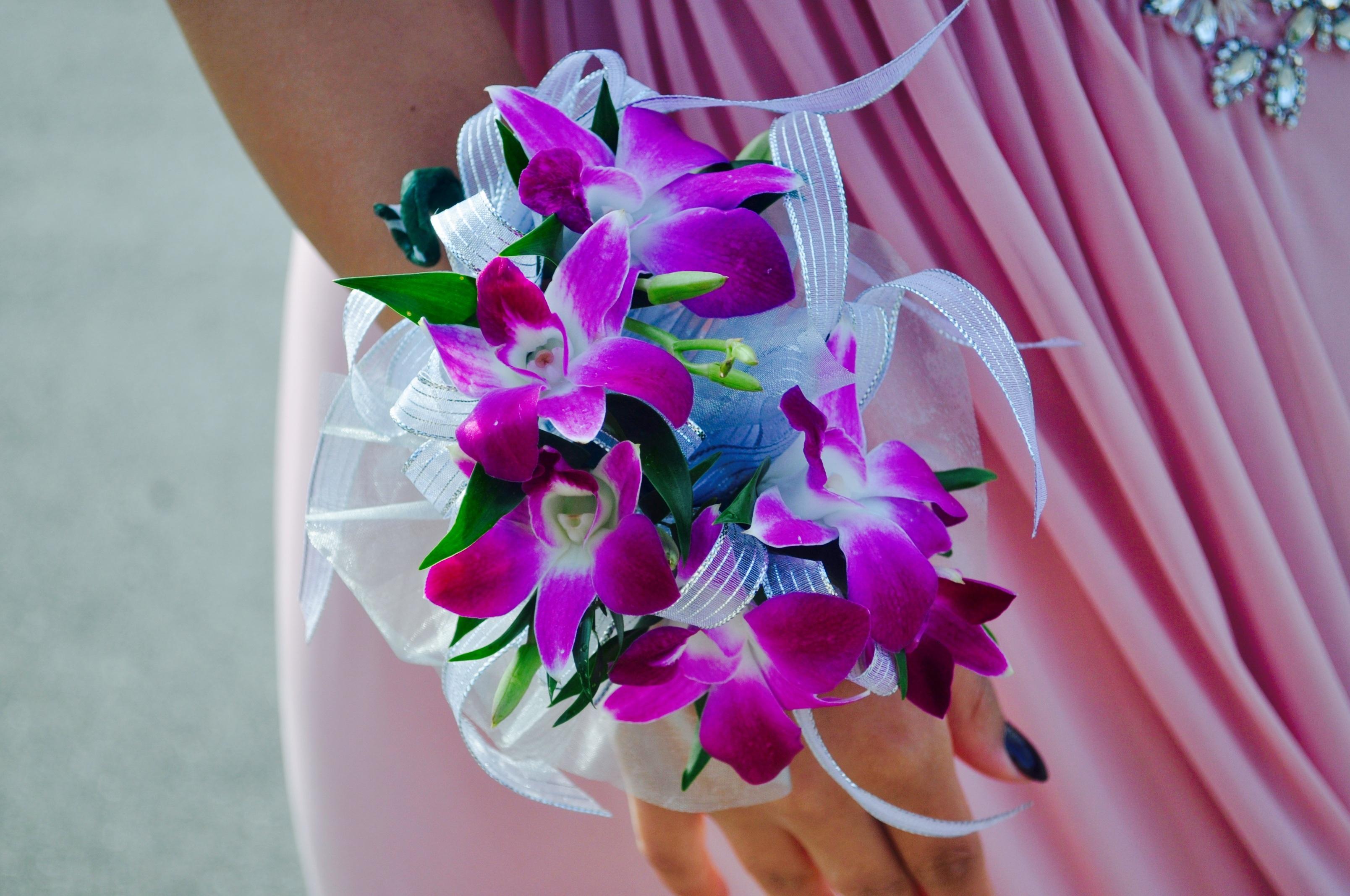 Fotos gratis : niña, flor, púrpura, pétalo, floral, hembra ...