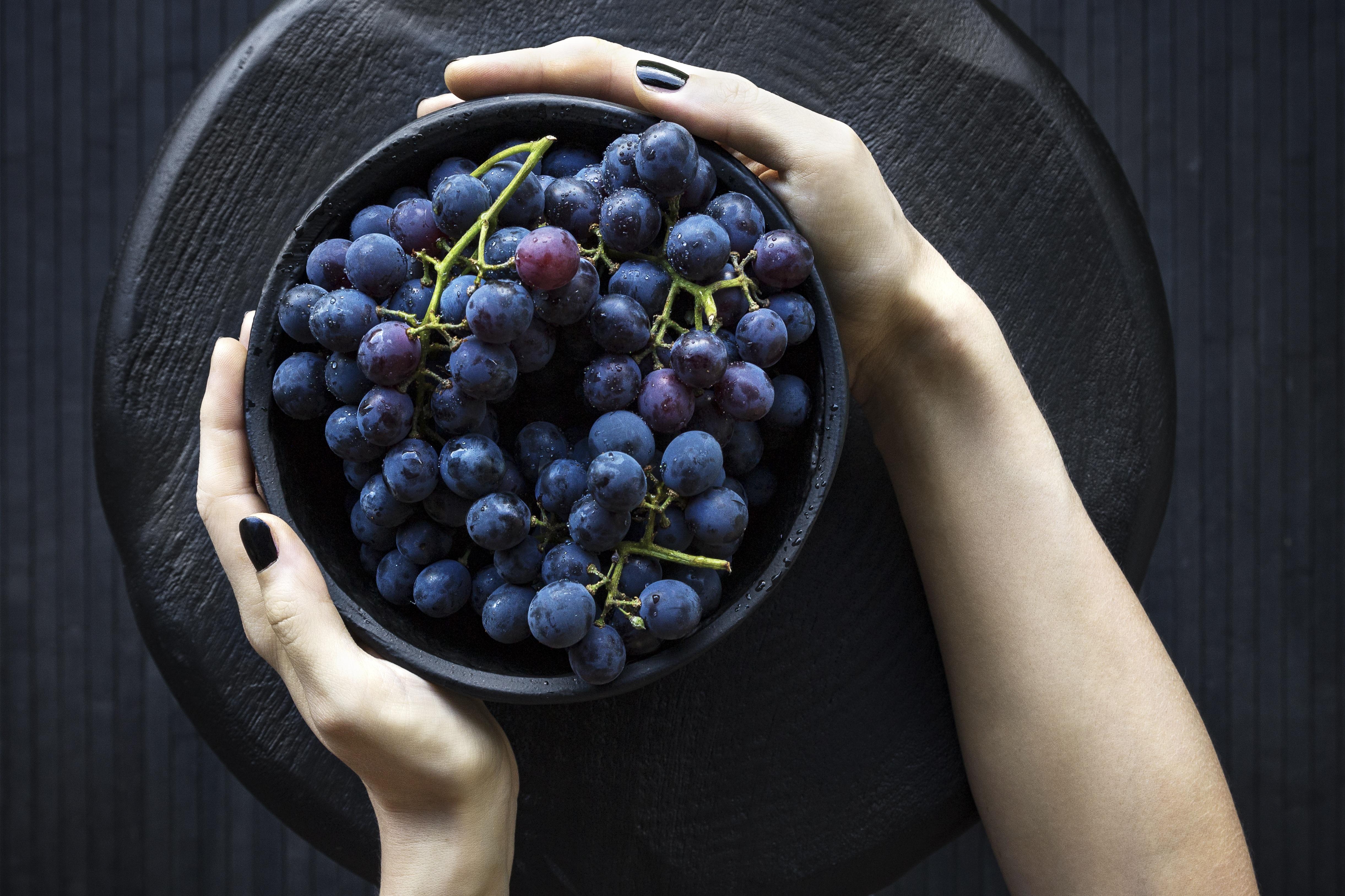 Free Images : grape, fruit, berry, flower, dark, food, produce, blue ...