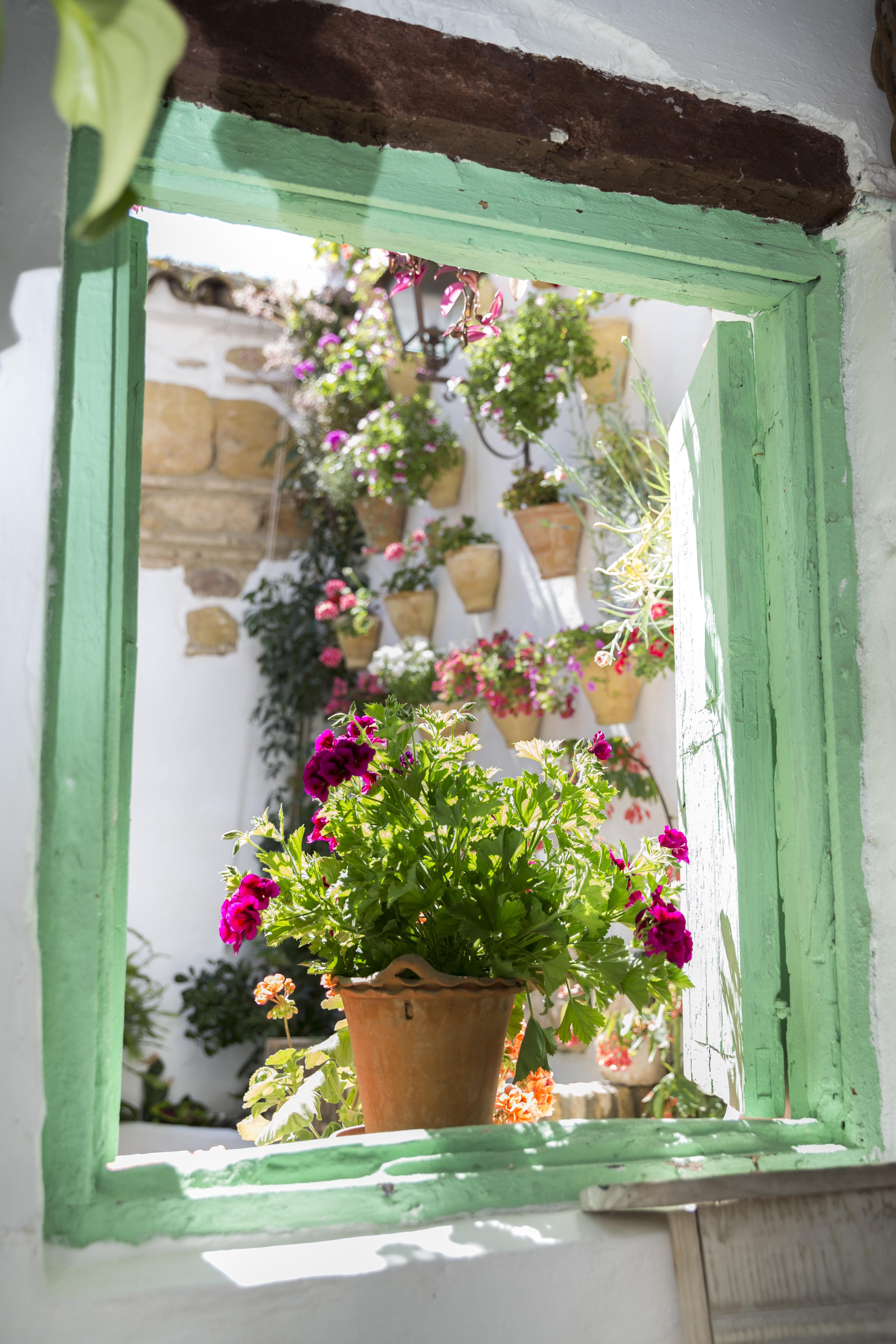 Decoracin de interiores con bonsai decoracin interiores - Patios exteriores decoracion ...