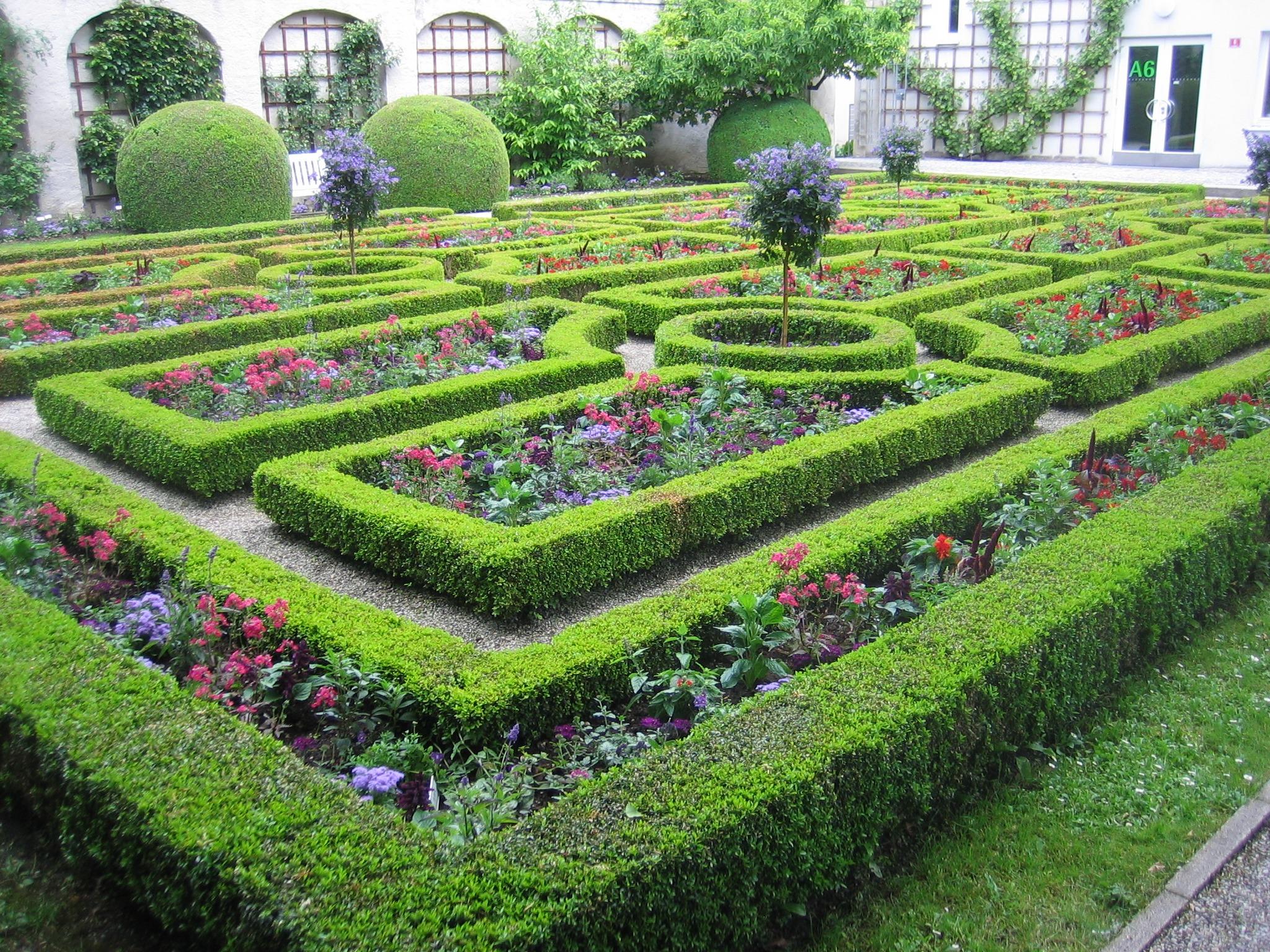 Fotos gratis planta c sped flor bot nica arbusto for Jardin laberinto