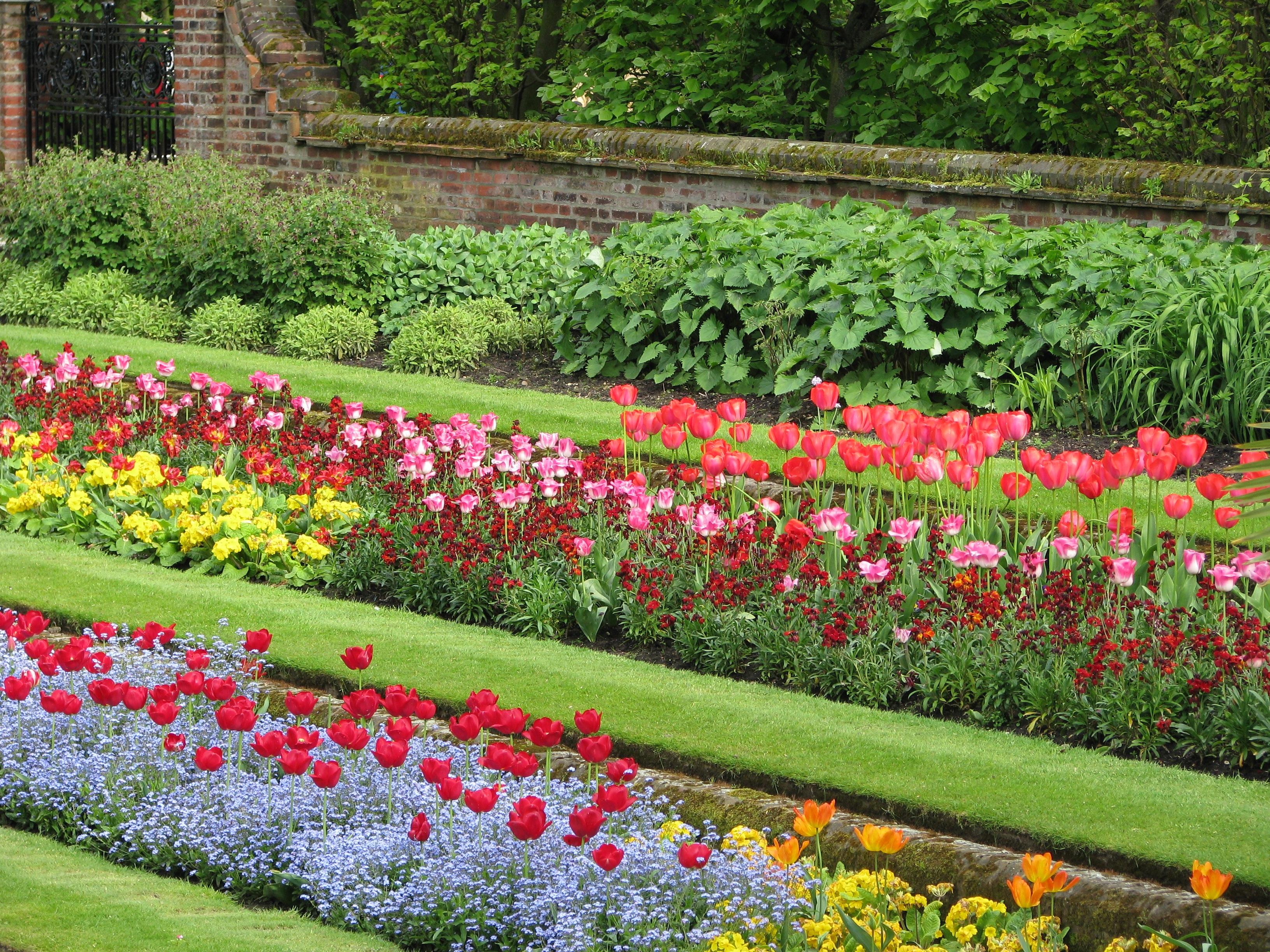 мире цветочный газон в картинках участники теплой