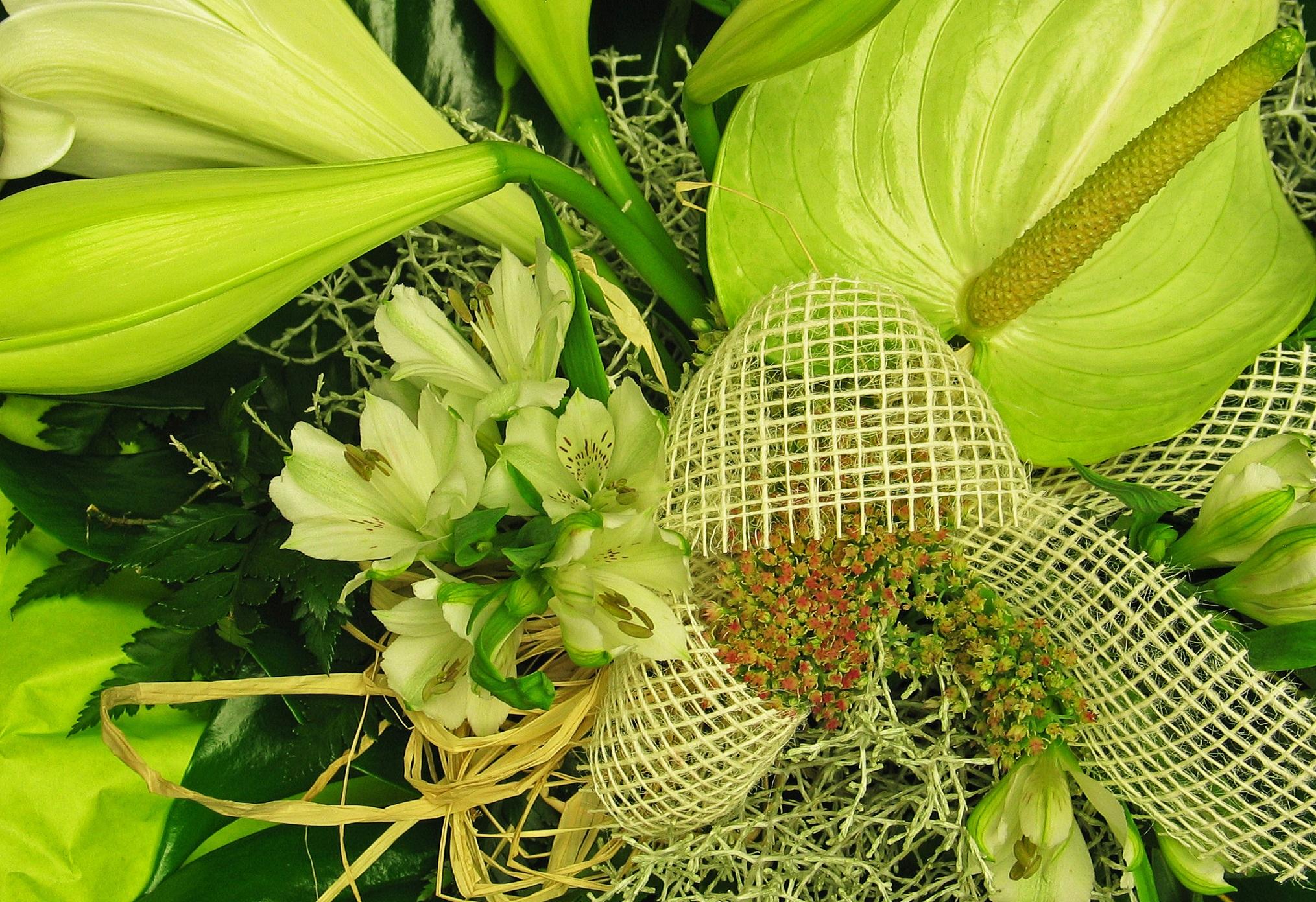 Free Images Leaf Food Produce Botany Yellow Flora