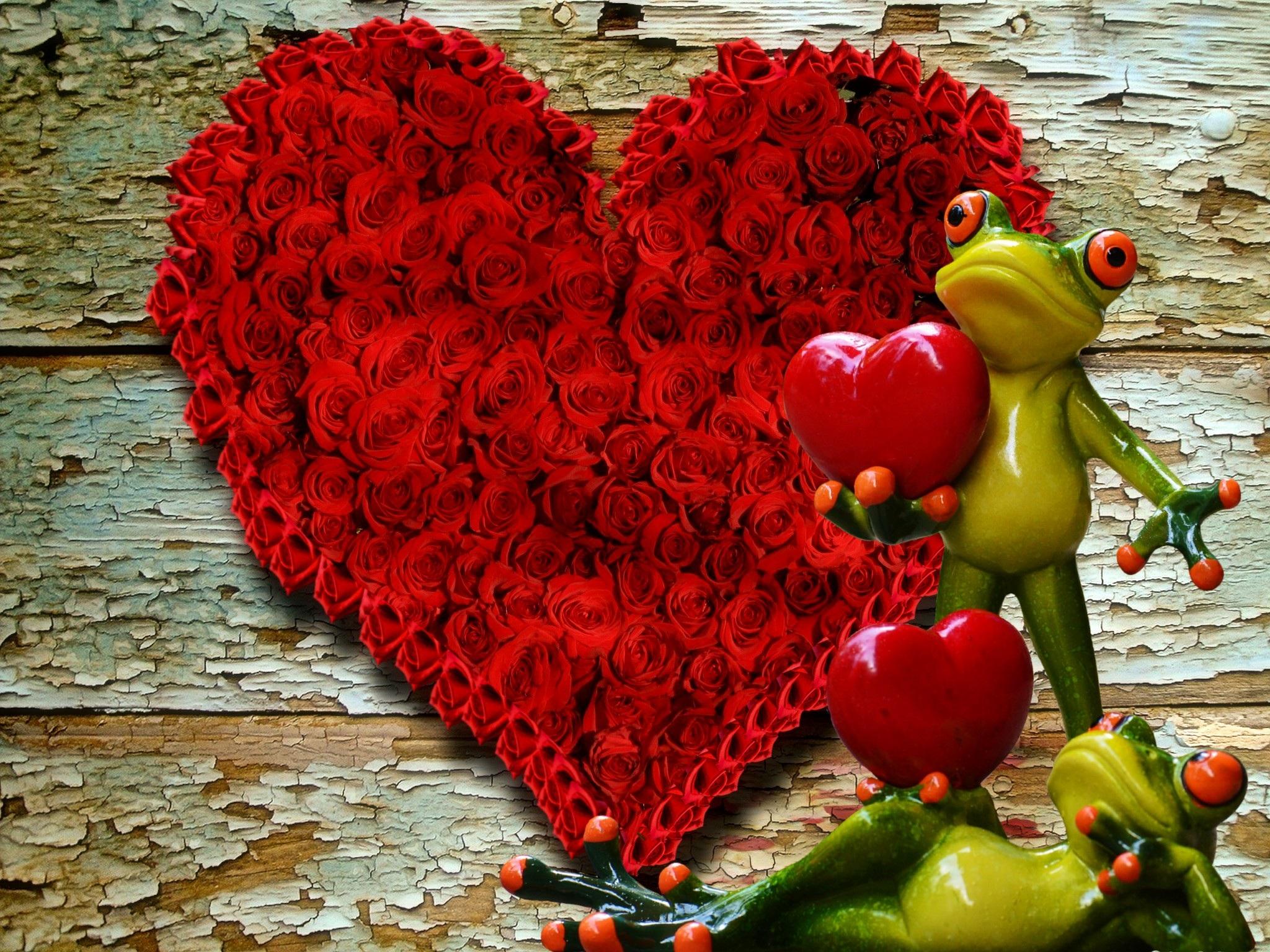 Images gratuites feuille fleur mignonne amour c ur aliments rouge produire couleur l - Images coeur gratuites ...
