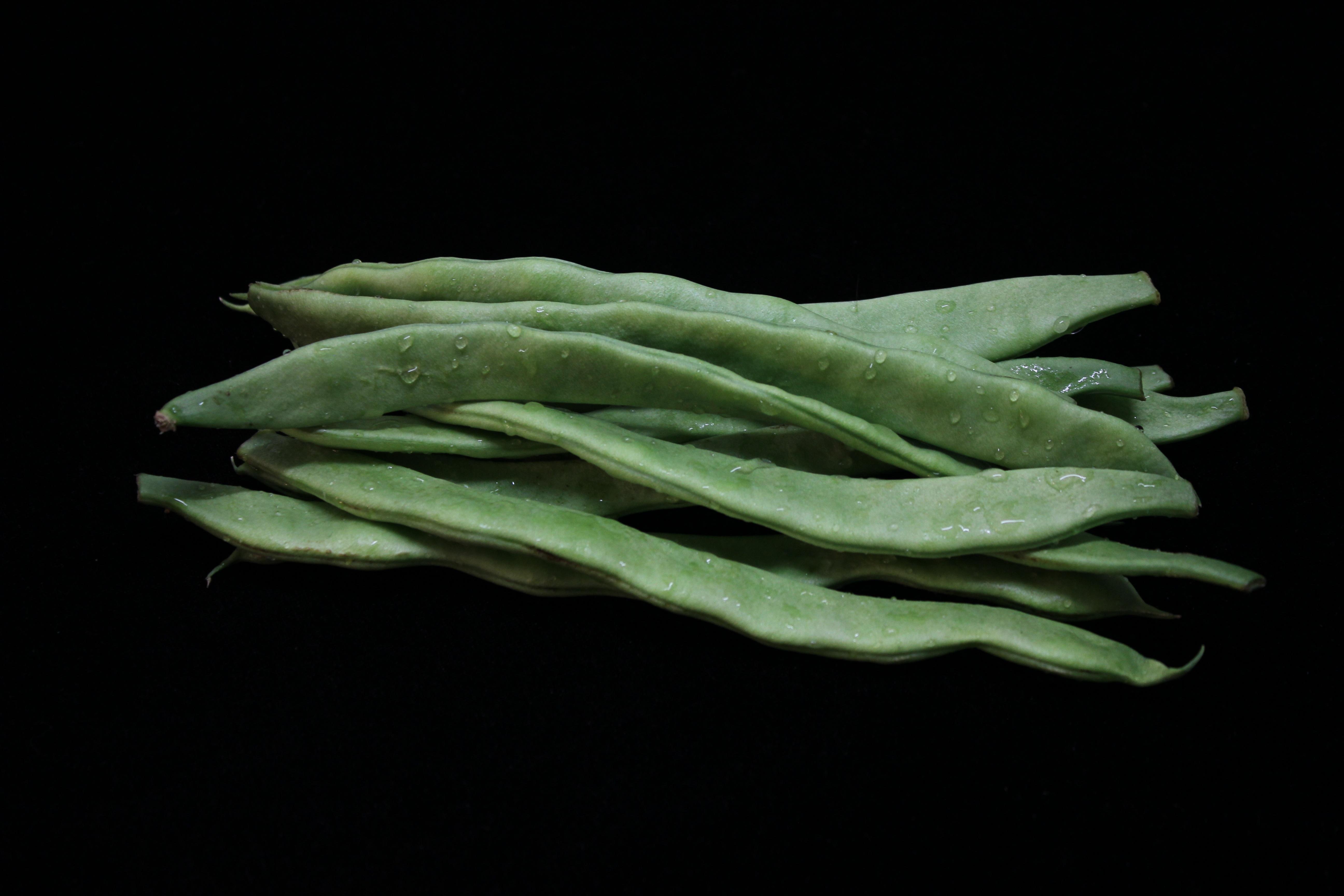 images gratuites feuille fleur aliments vert produire l gume des haricots. Black Bedroom Furniture Sets. Home Design Ideas