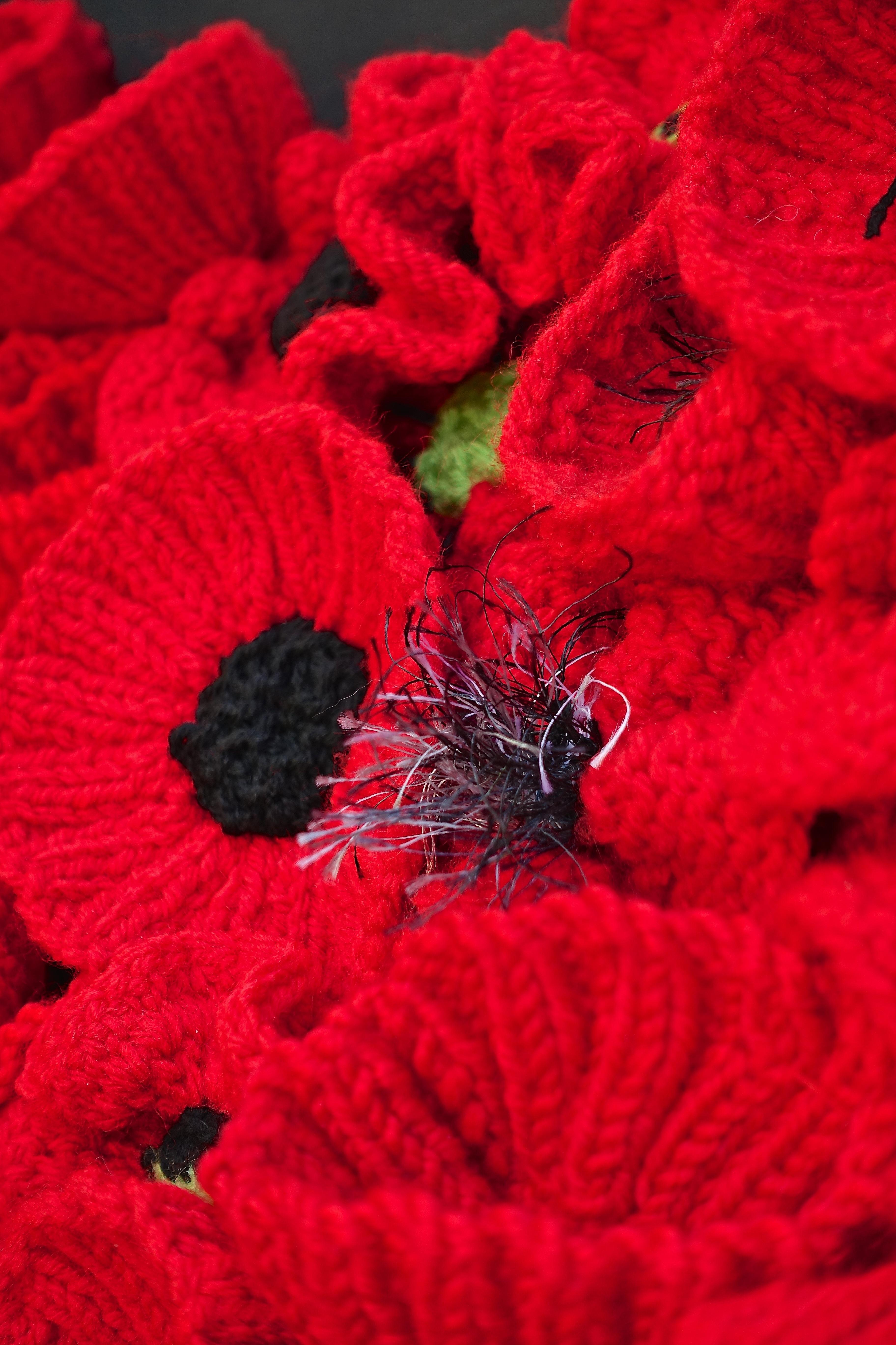 Free images leaf flower petal bloom pattern red flowers plant leaf flower petal bloom pattern red flowers crochet art design poppy knitted poppies macro photography izmirmasajfo