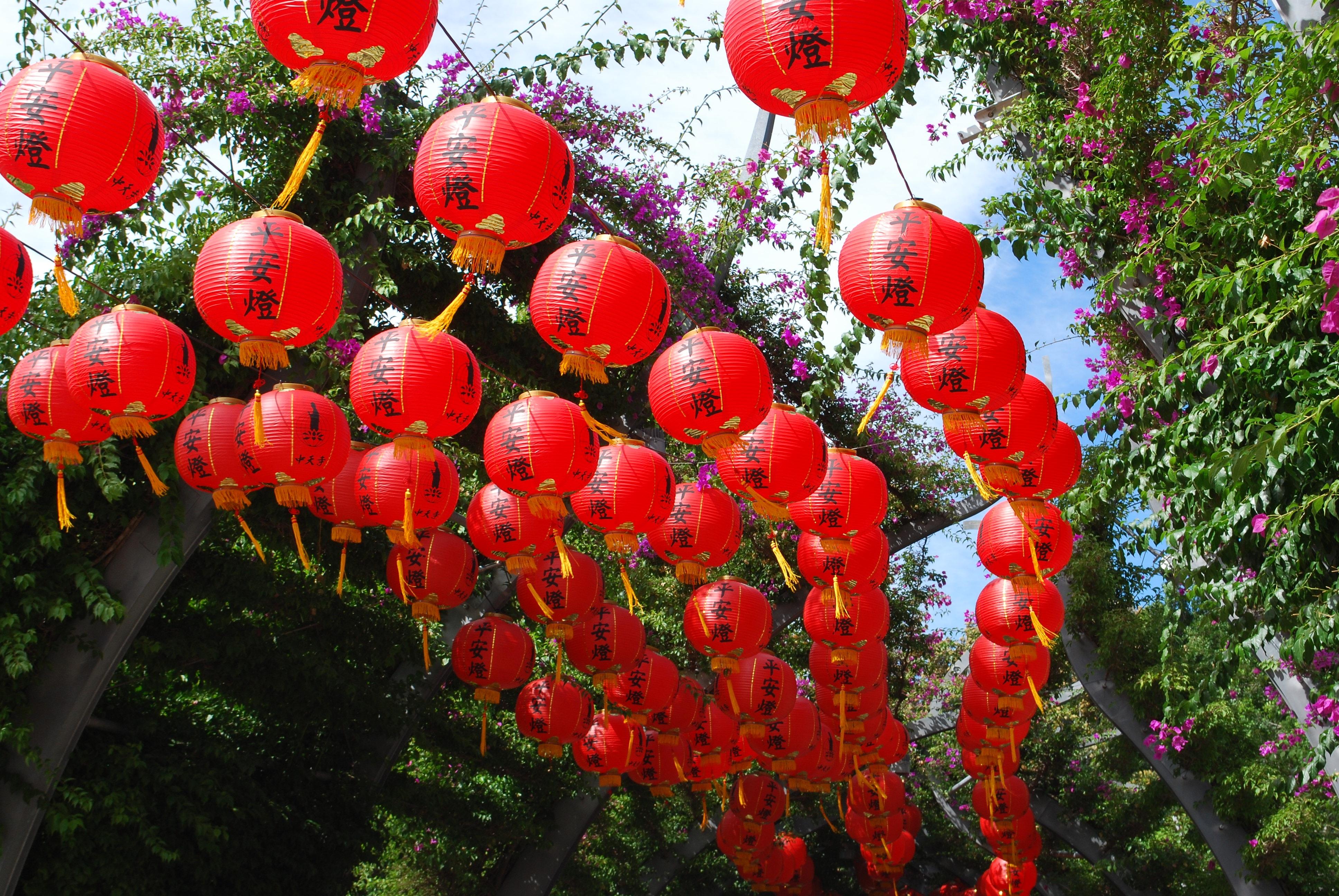 Китайские фонарики фото цветы