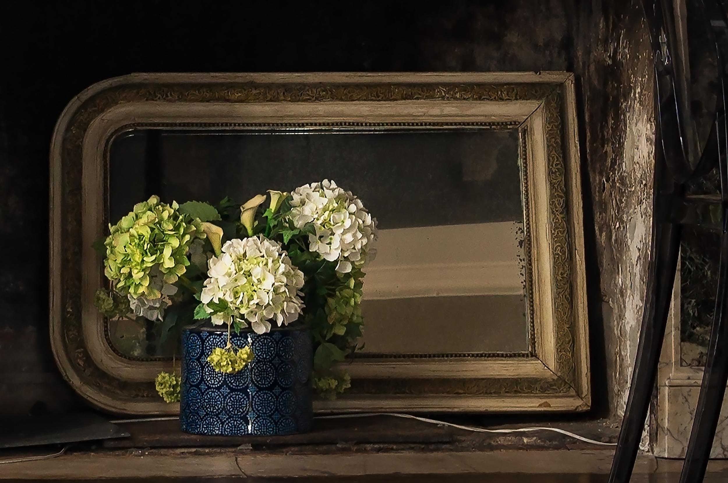 Images gratuites plante la photographie fleur fen tre for Peinture sur fenetre