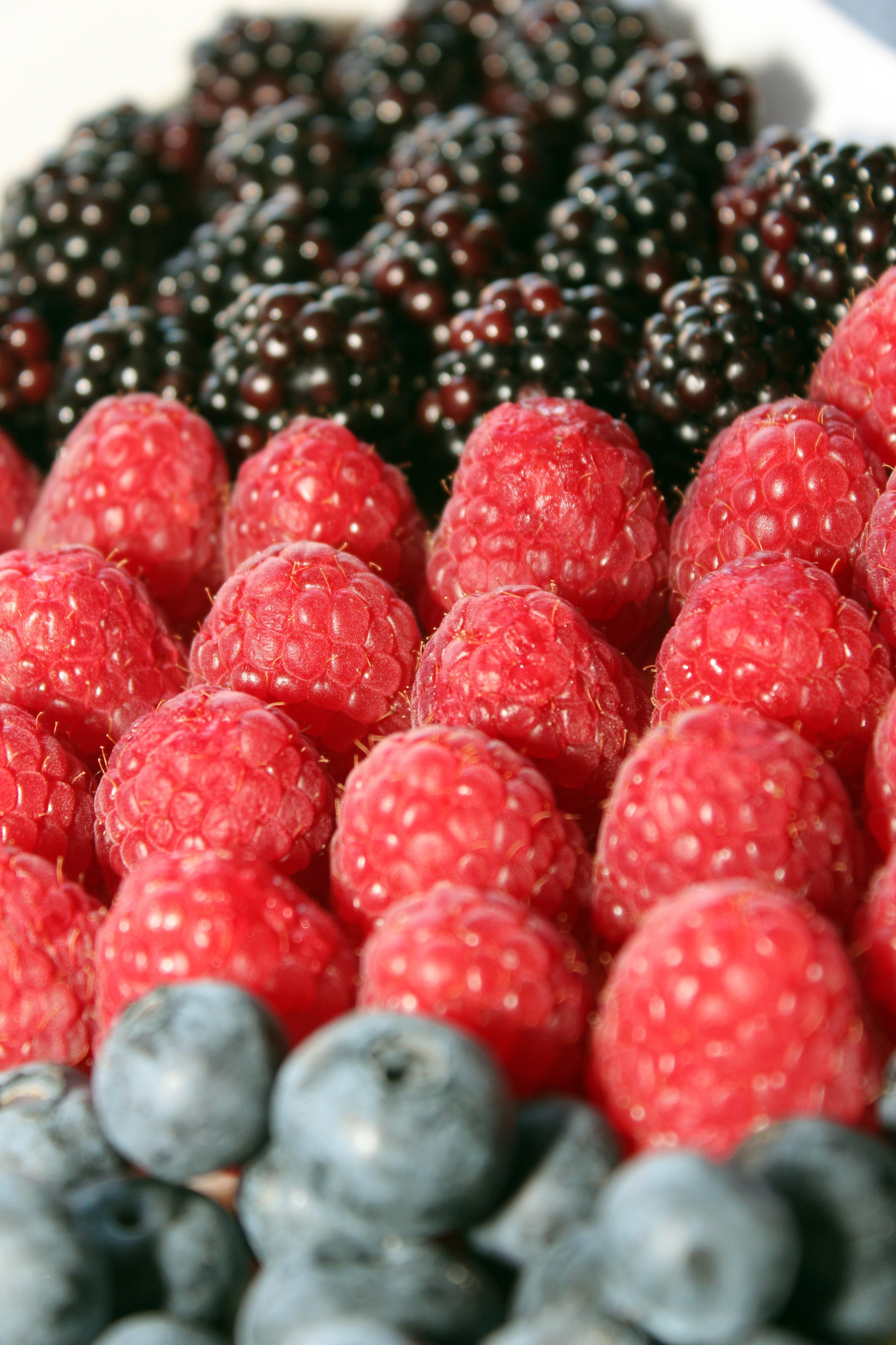 Plant Raspberry Fruit Berry Food Produce Dessert Blackberry Blueberries Raspberries Blackberries Frutti Di Bosco Zante Currant