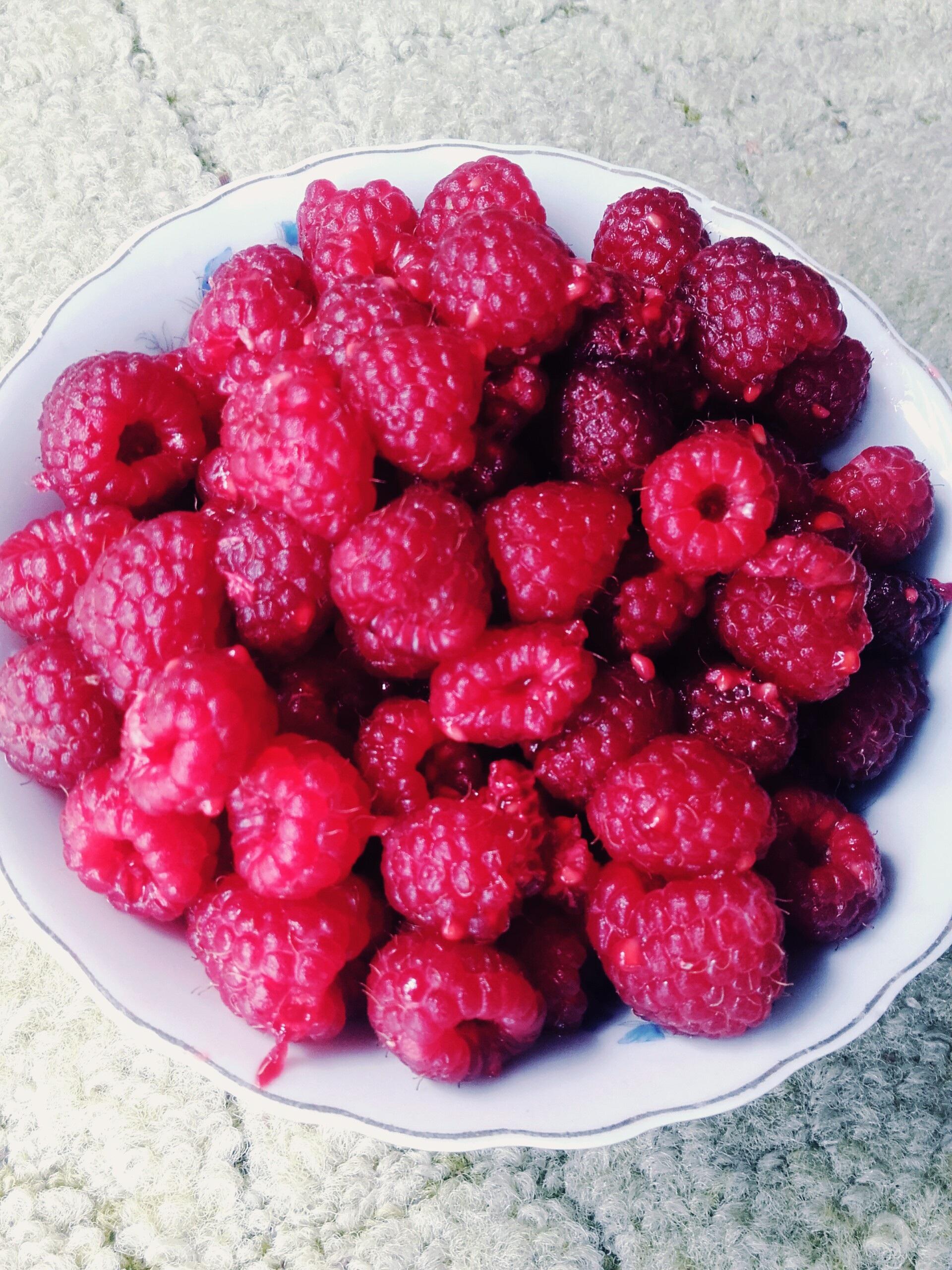 Клубника ягода или фрукт