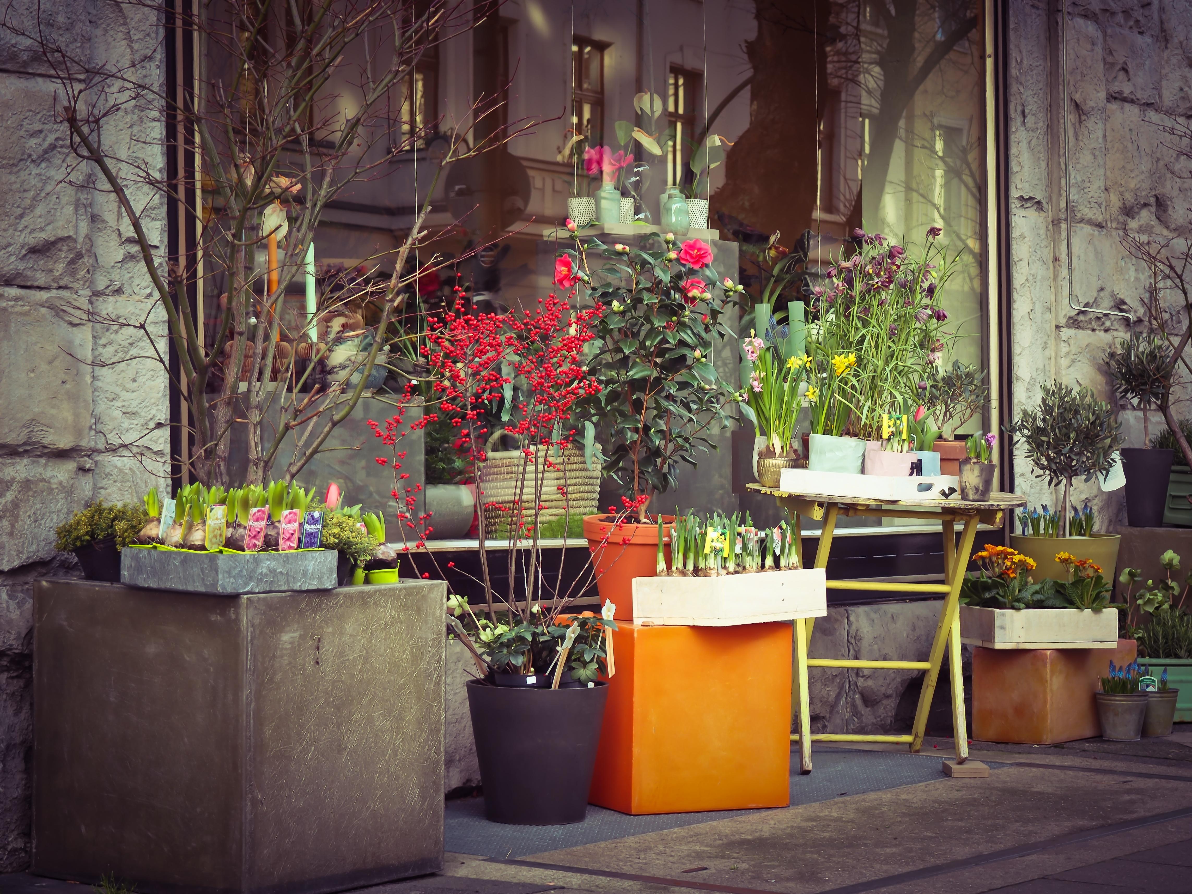 plant road flower city urban color street scene florist flowers altar floristry flower shop