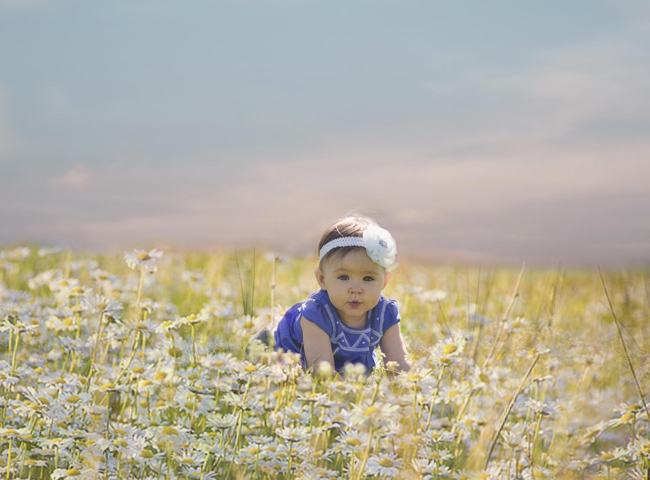 Free Images   Sky  Field  Vintage  Meadow  Prairie  Morning  Flower  Kid  Cute  Food  Produce