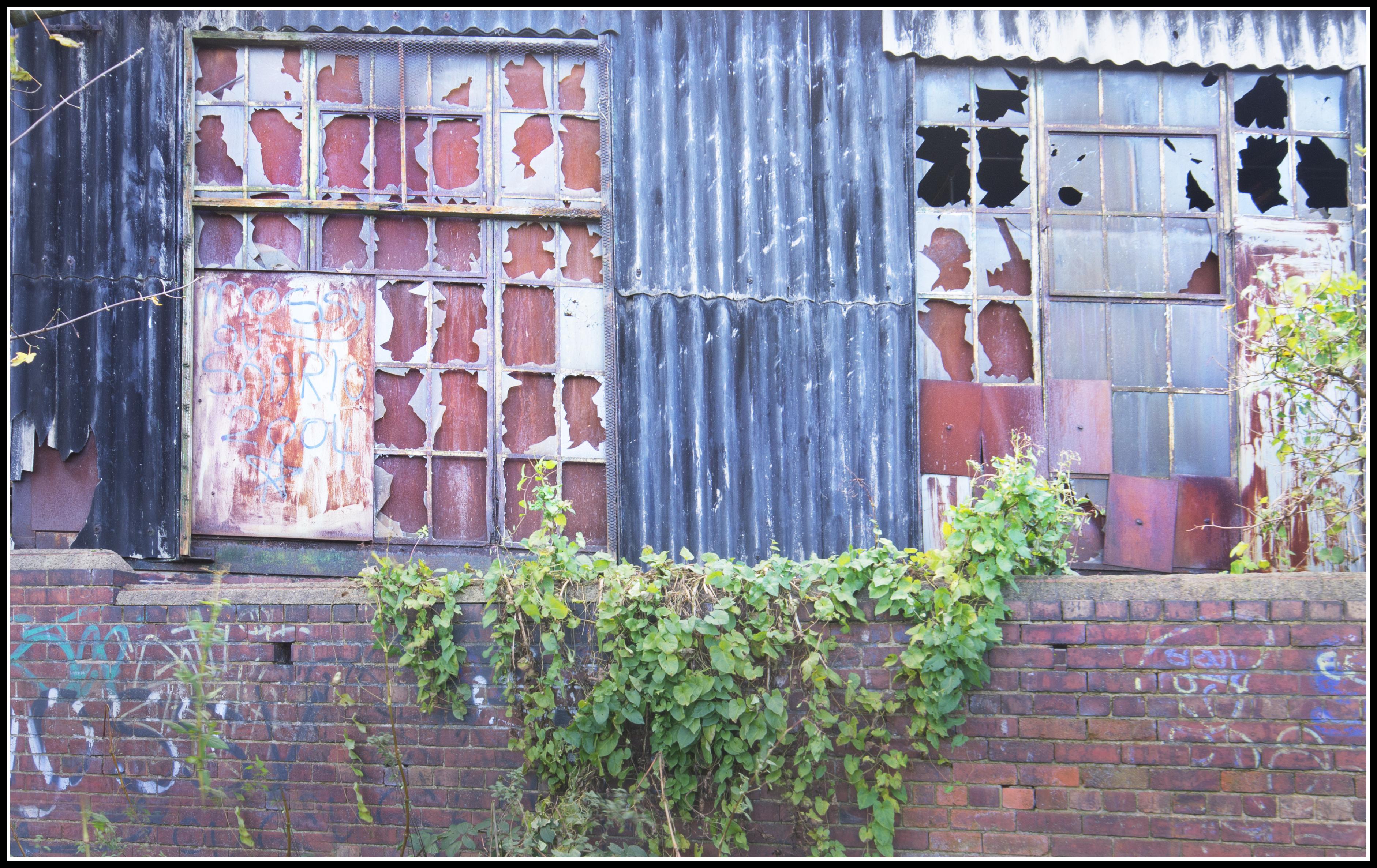 Fotos gratis : planta, calle, casa, ventana, pared, moho, rojo ...