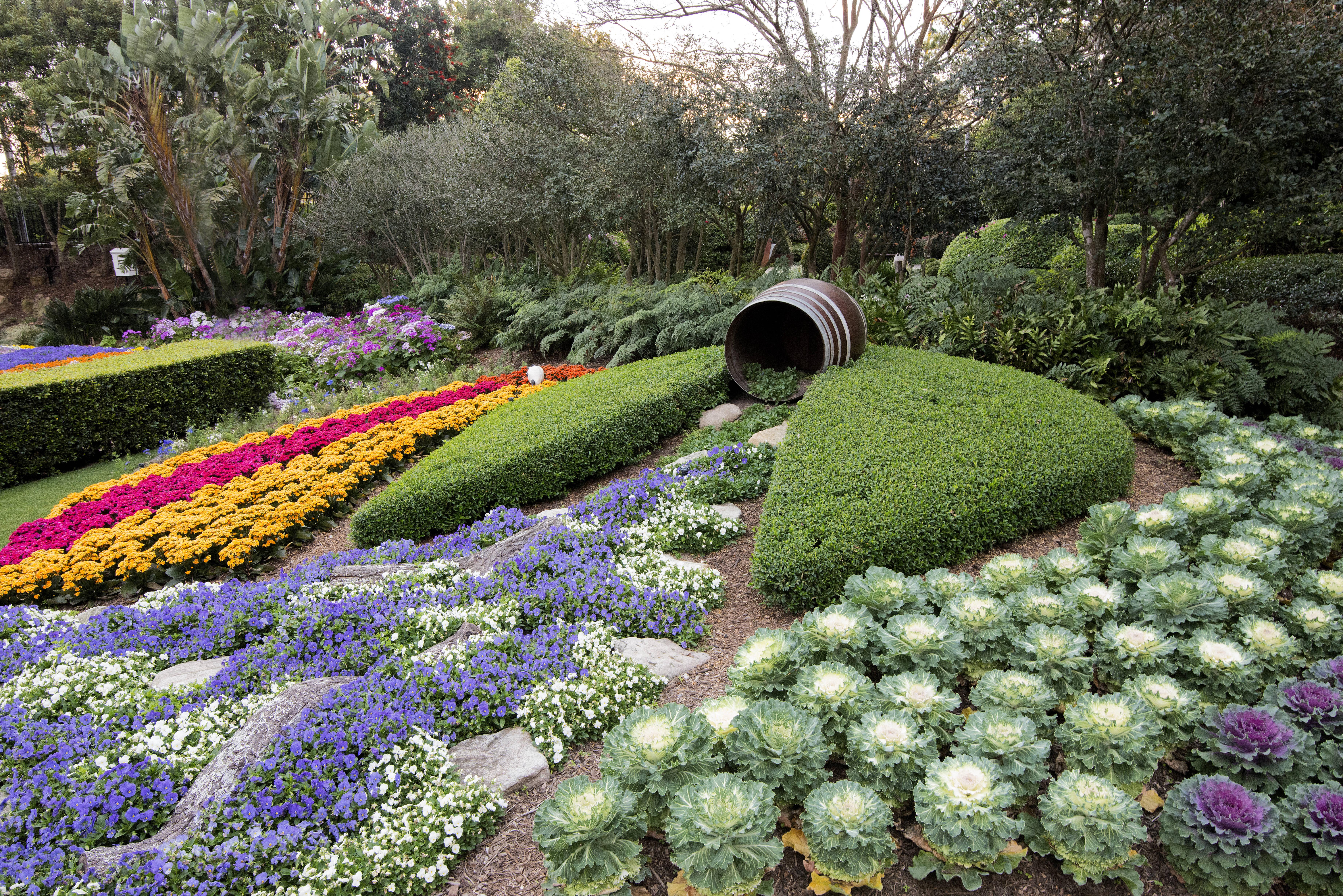 Botanik  Fotoğraf : sokak, çim, çiçek, botanik, Bahçe, bitki örtüsü, Güzel ...