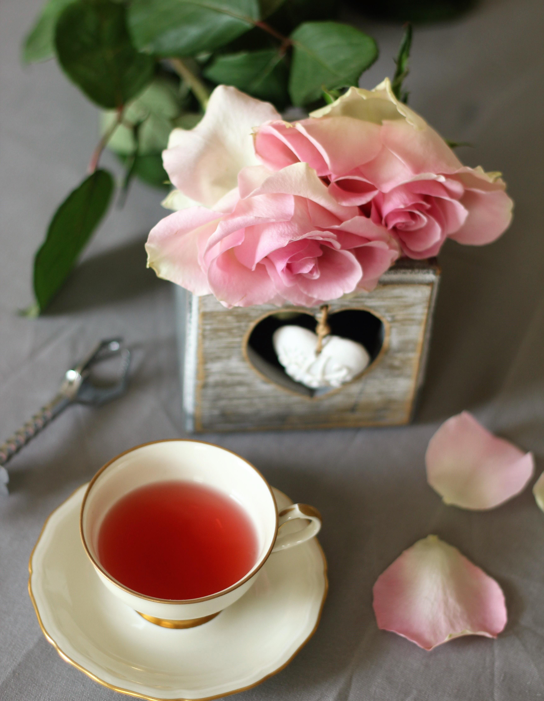 маленькие цветы чая картинки кишит сотнями тысяч