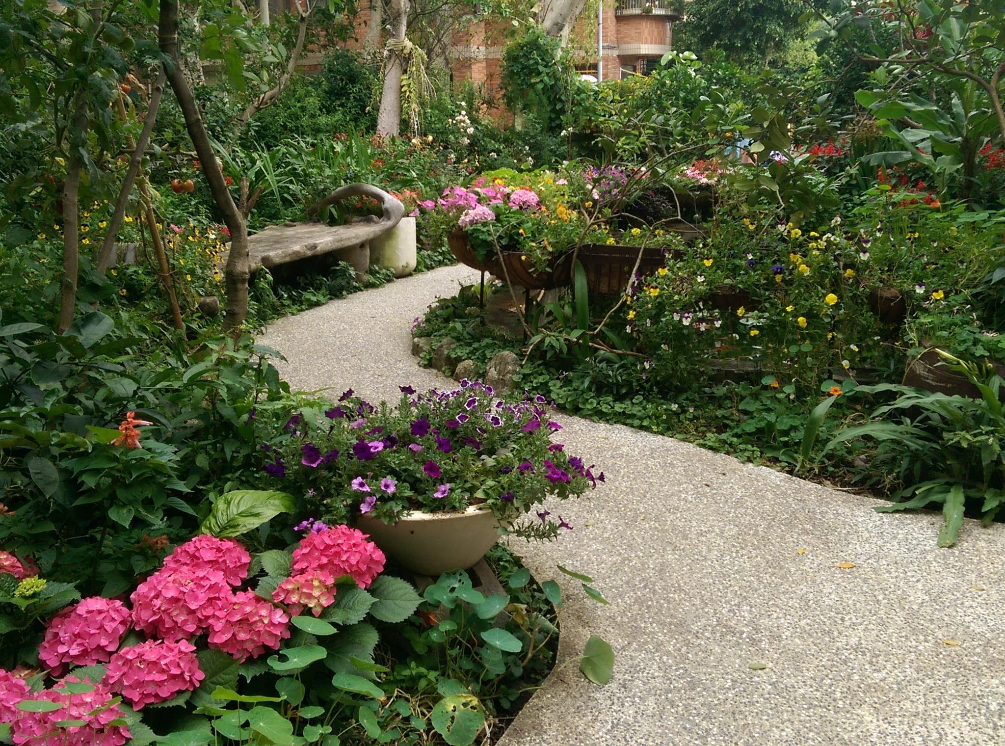 Fotos gratis : planta, sendero, césped, flor, Pasarela, estanque ...