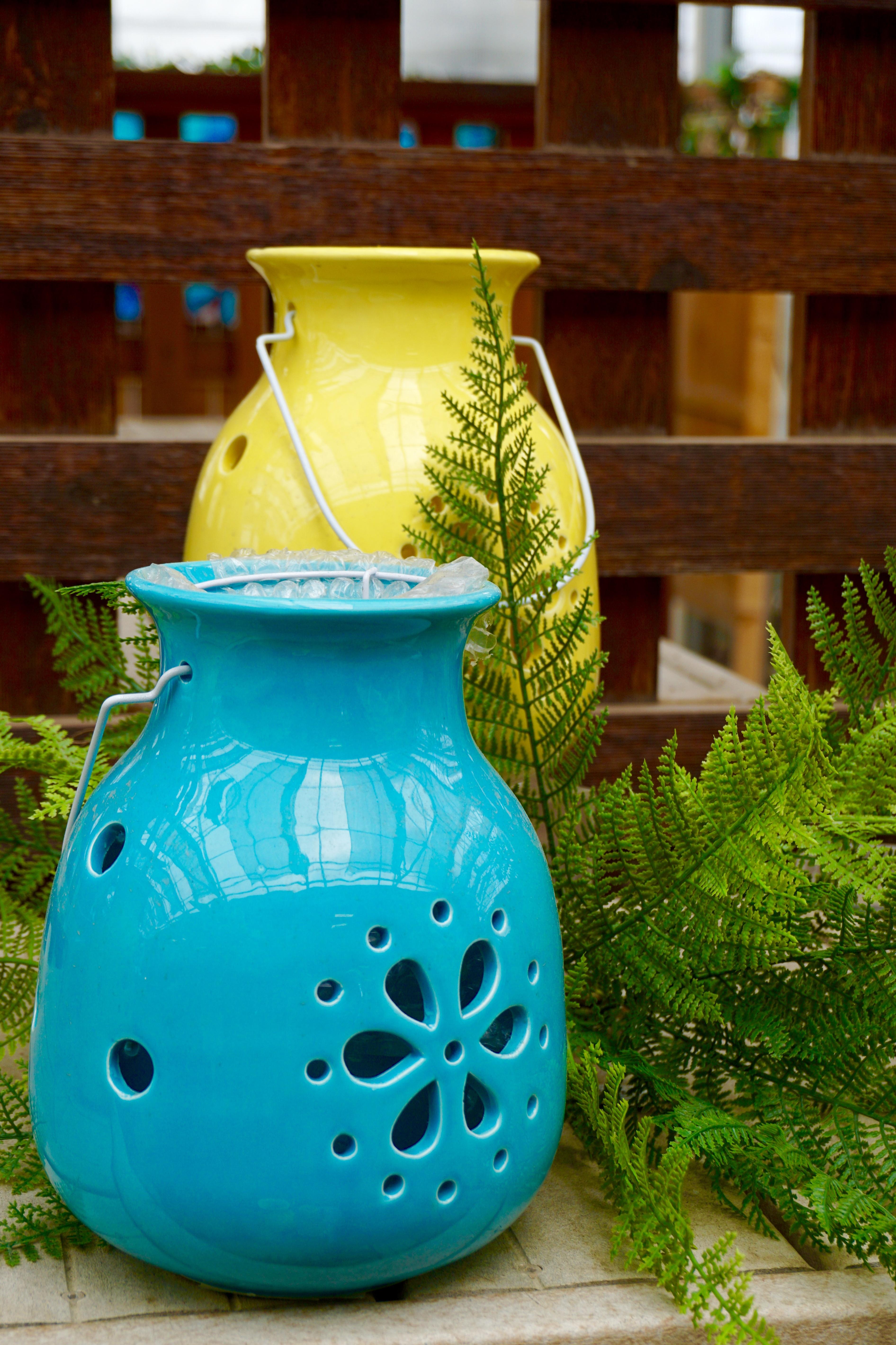 Kostenlose Foto Pflanze Vase Grün Keramik Blau Gelb Garten