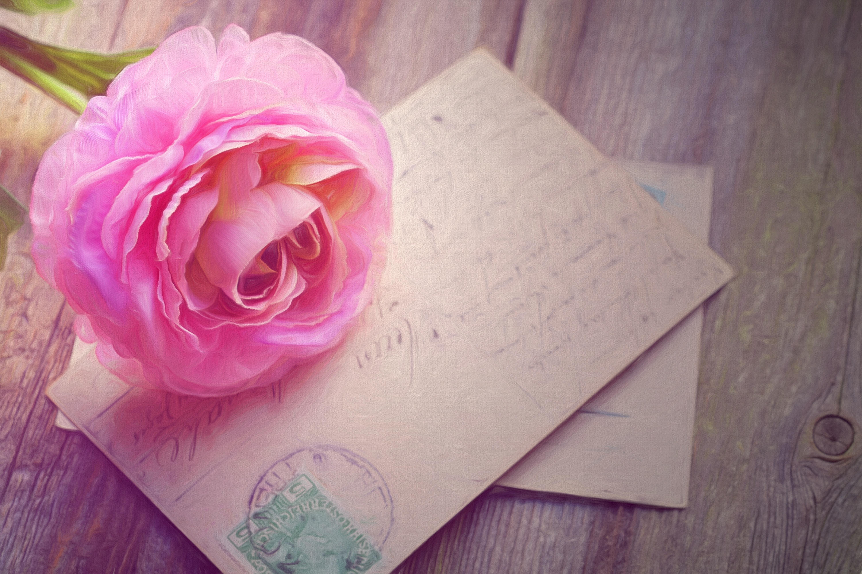 Fotoğraf Bağbozumu çiçek Taçyaprağı Gül Pembe Kağıt Boyama