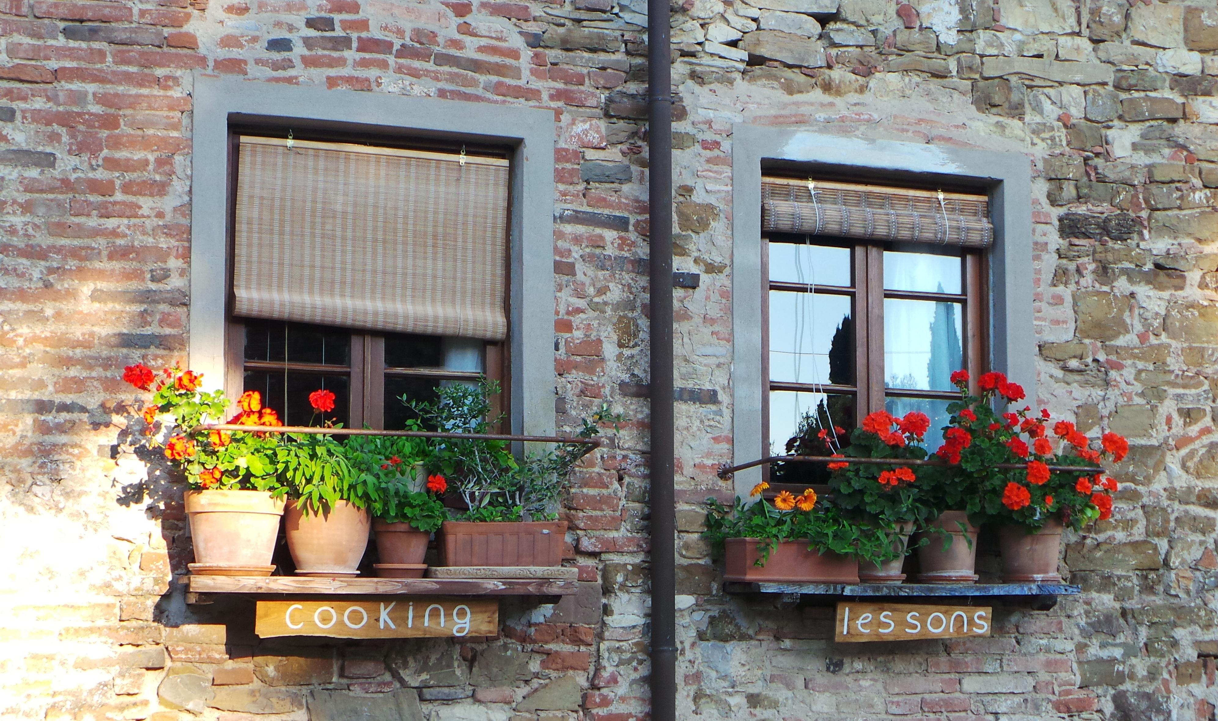 Free Images Plant Vintage House Window Restaurant Home