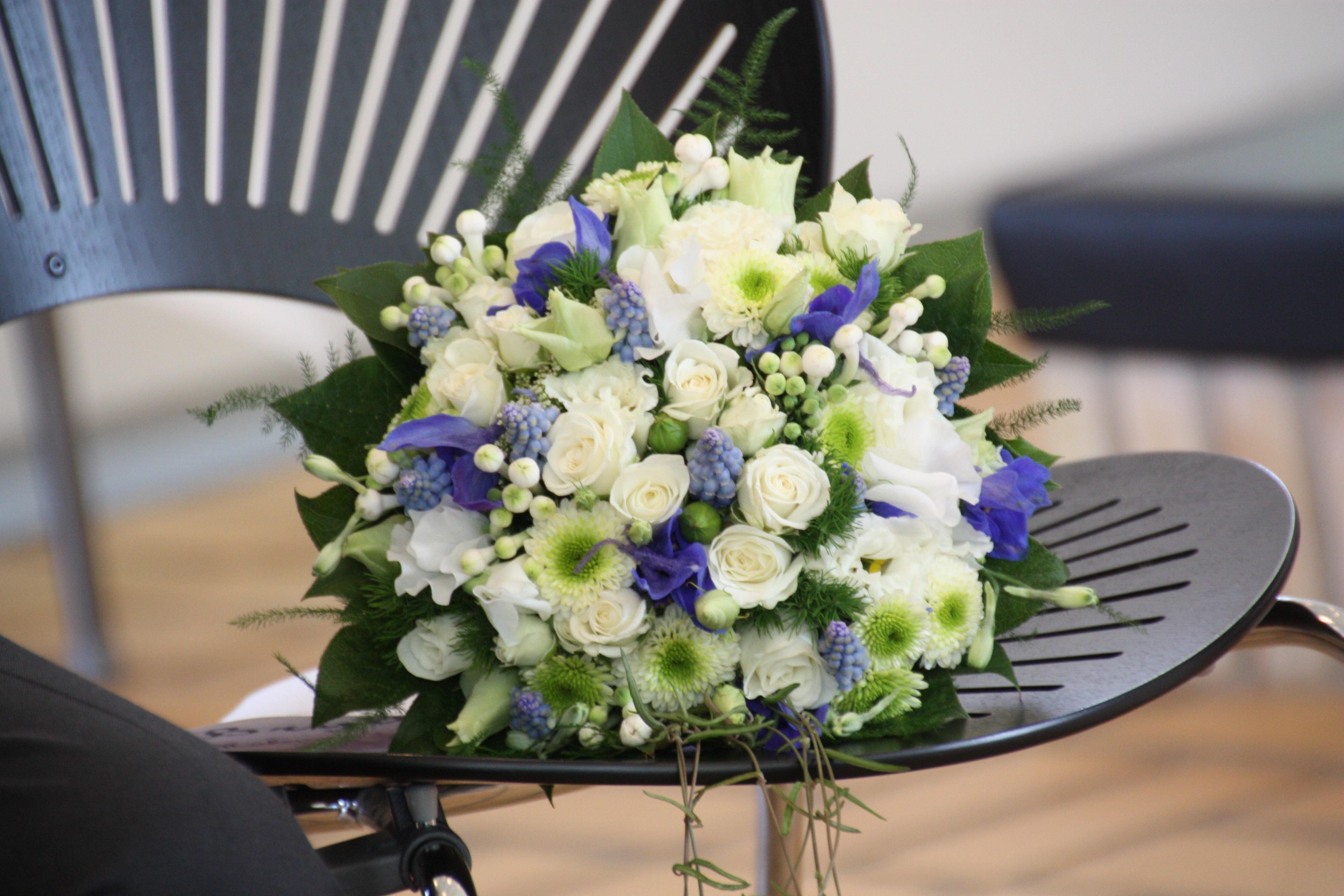 Free Images : plant, white, rose, romance, blue, wedding, flora ...