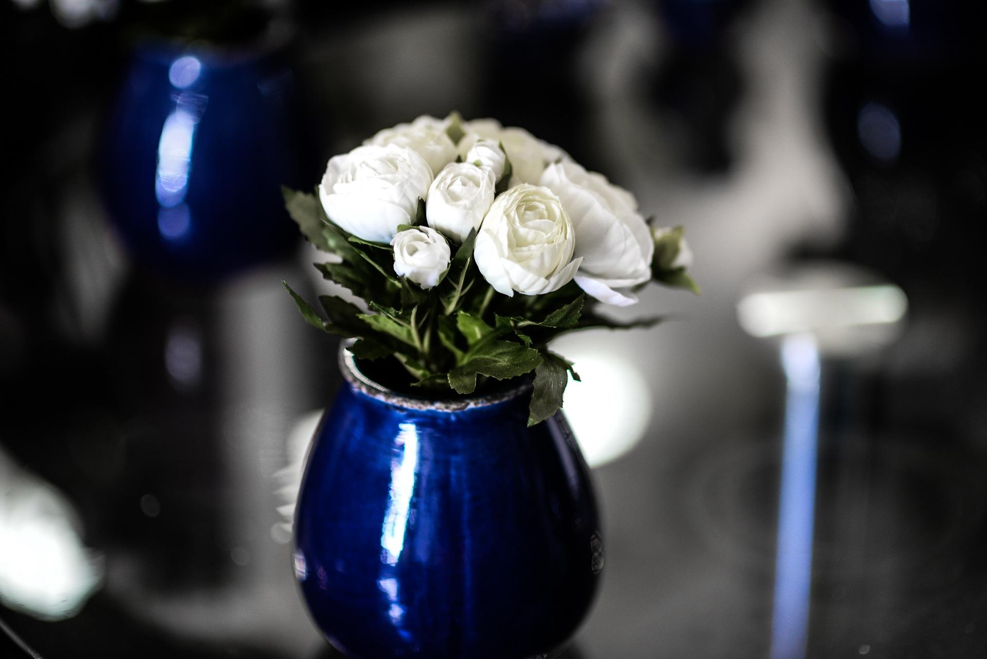 Free Images Plant White Glass Decoration Green Blue Black