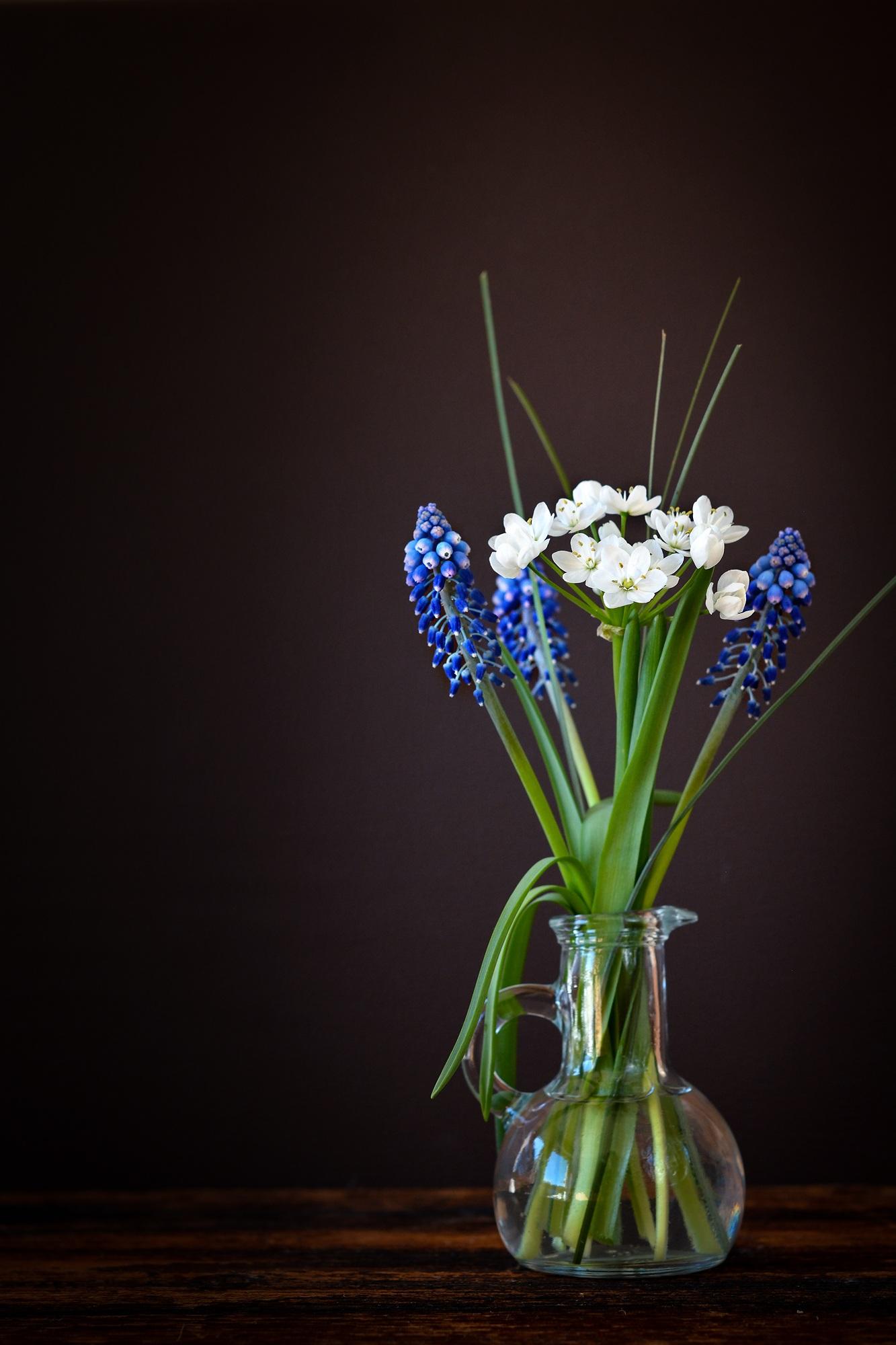 Gambar Menanam Putih Kaca Vas Dekorasi Hijau Biru Dekat Bunga Batu Masih Hidup Lukisan Deco Seni Muscari Budidaya Yakut