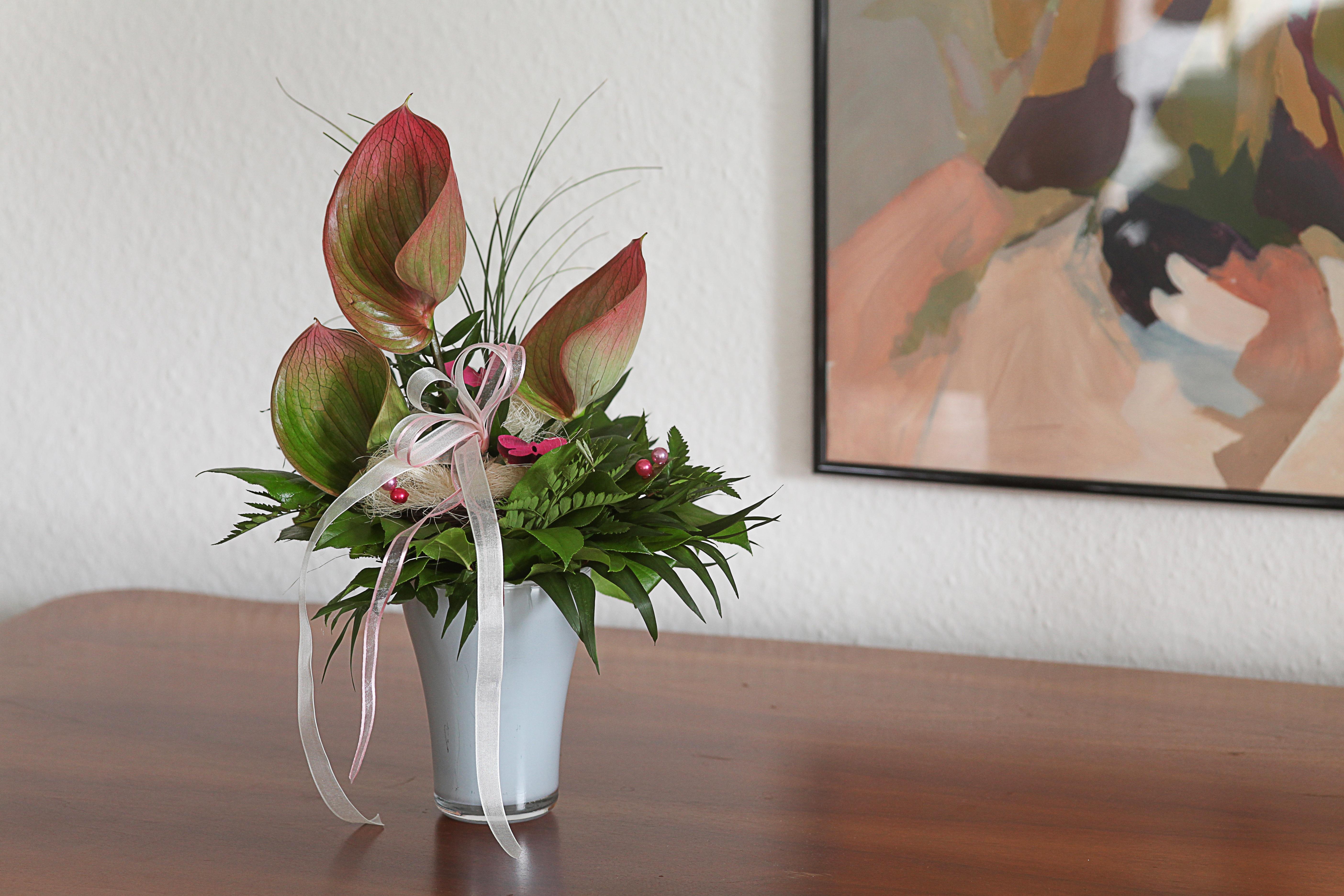 Free Images Plant White Interior Rose Decoration