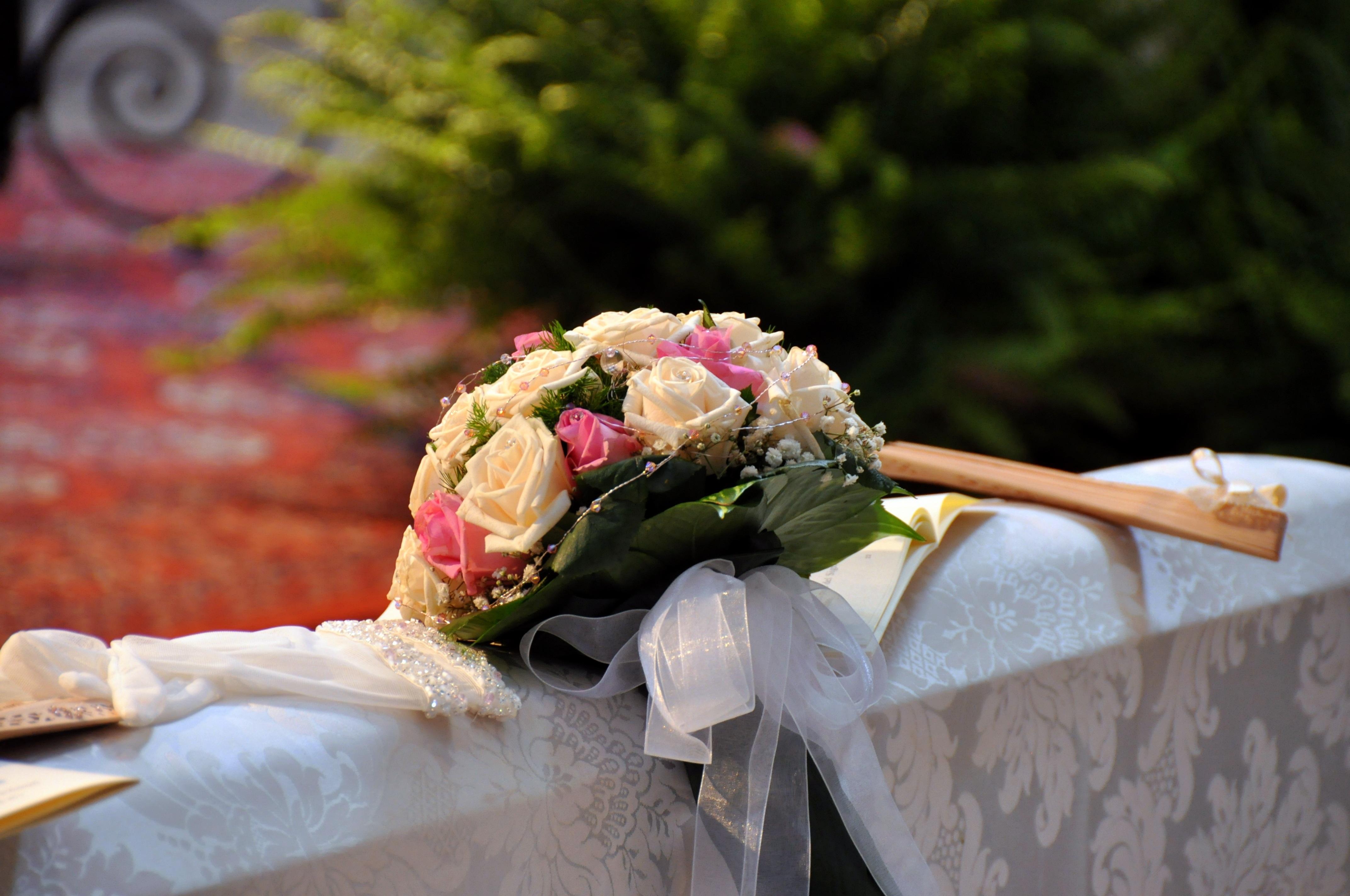 Gratis afbeeldingen fabriek wit bloem roos maaltijd