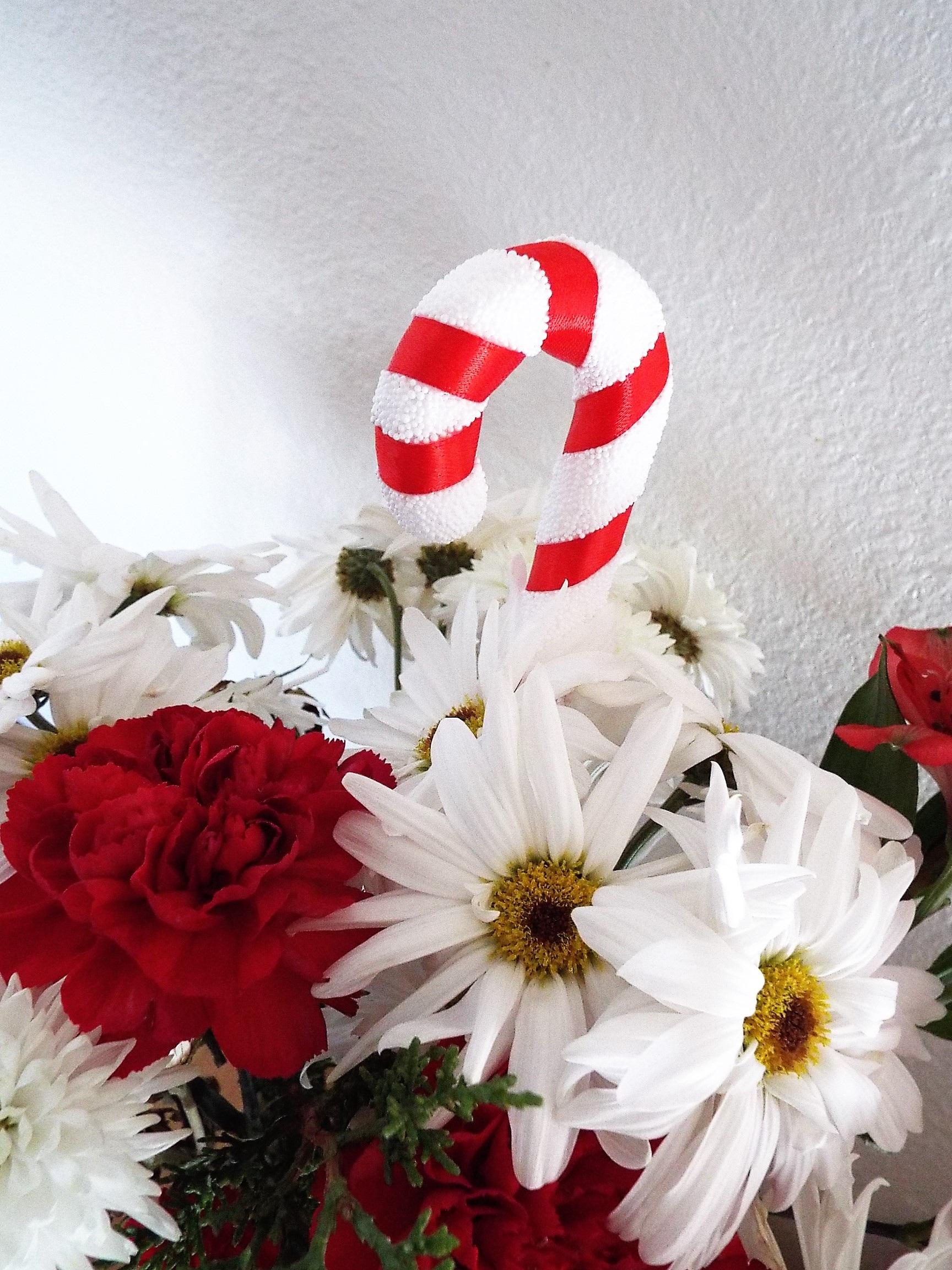 kostenlose foto : weiß, blume, blütenblatt, blumen-, rot, Einladungen