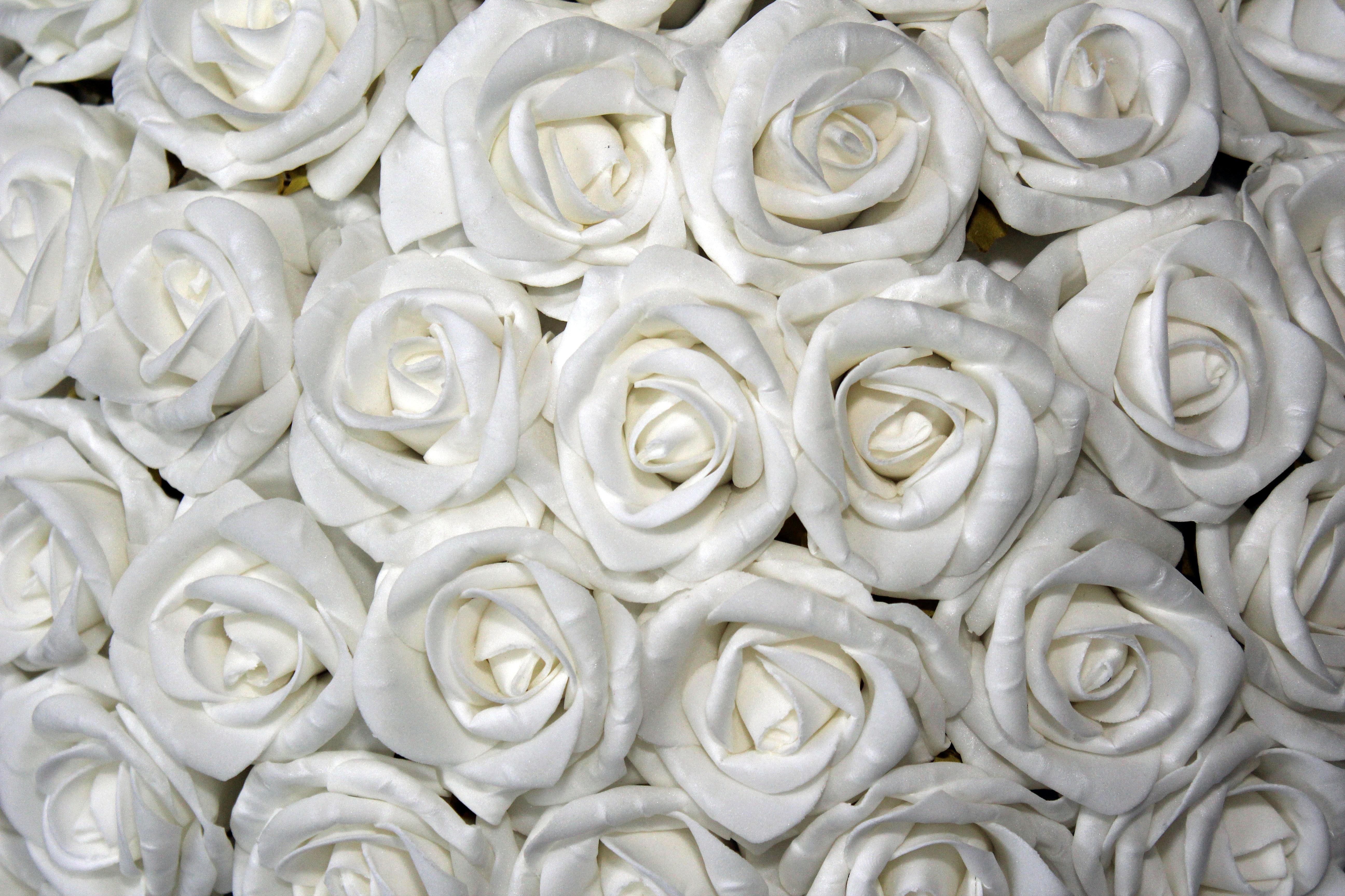 Free images white petal rose dish food flowers icing floral plant white flower petal rose dish food flowers roses icing floral arrangement table decoration flowering plant mightylinksfo
