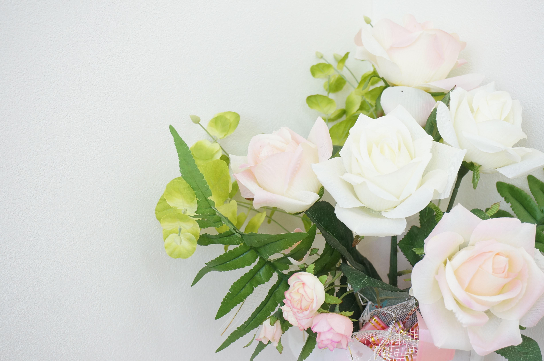plant white flower petal rose pink floristry flowering plant garden roses rose family rosaceae flower bouquet