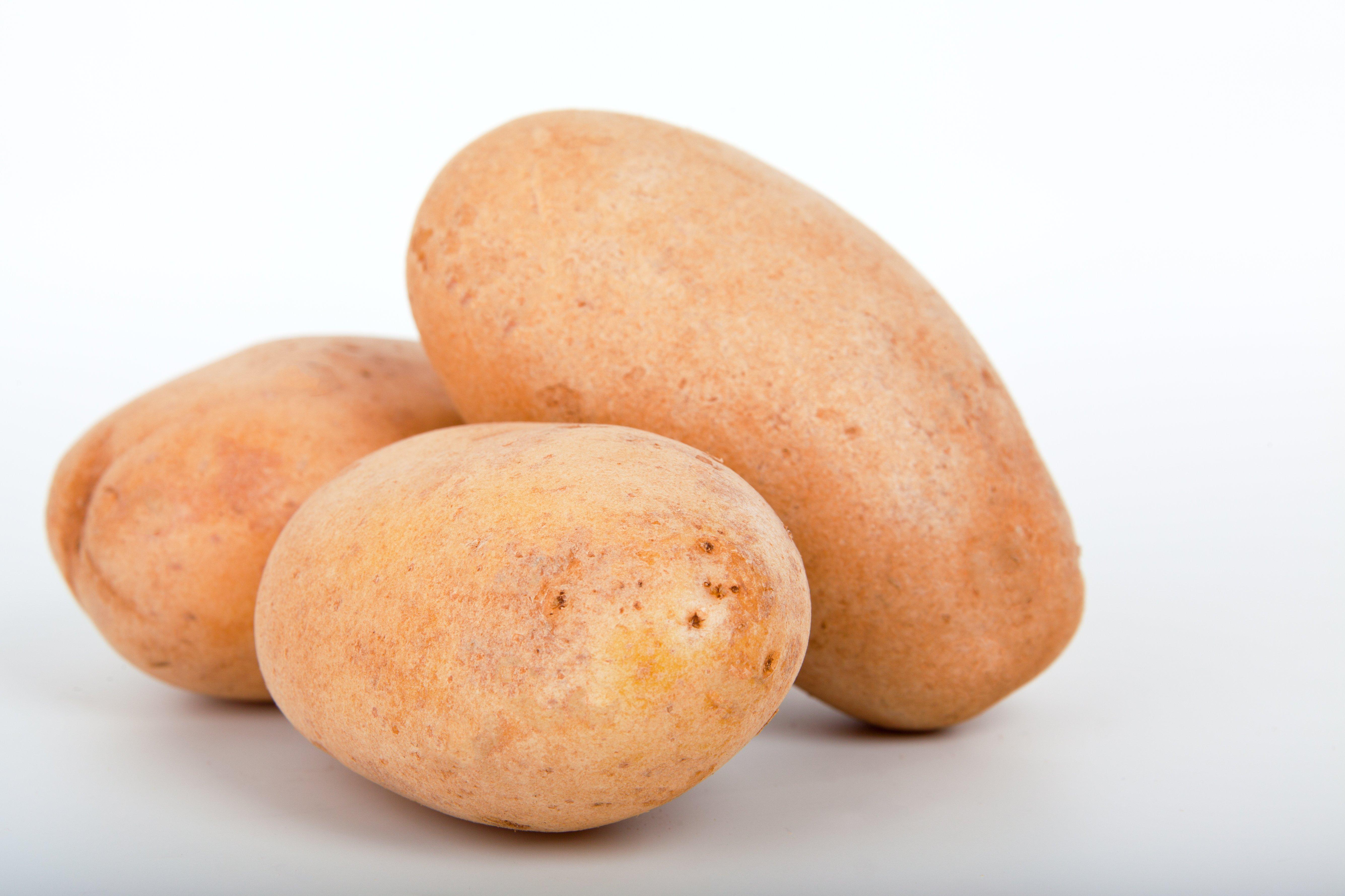 Kartoffel Bilder Kostenlos kostenlose foto weiß frucht isoliert lebensmittel produzieren