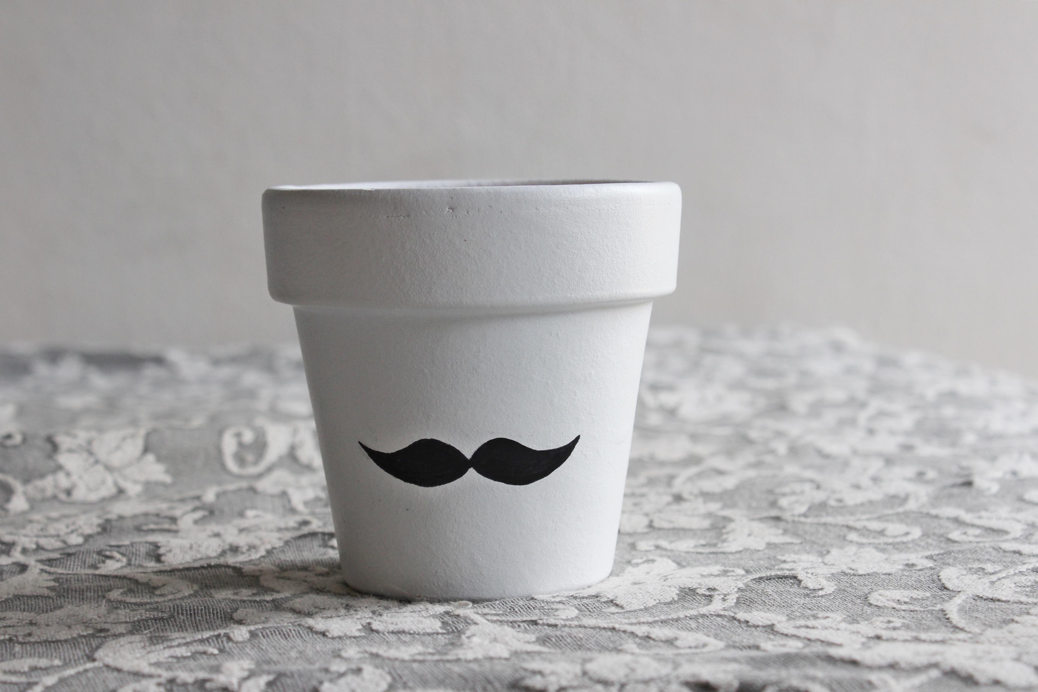 Free Images : plant, white, pot, vase, saucer, ceramic, drink, mug ...