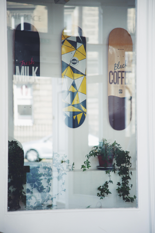 54c7360365c plante hvid skateboard vindue reklame butik afspejling farve banner hylde  blå kunst design
