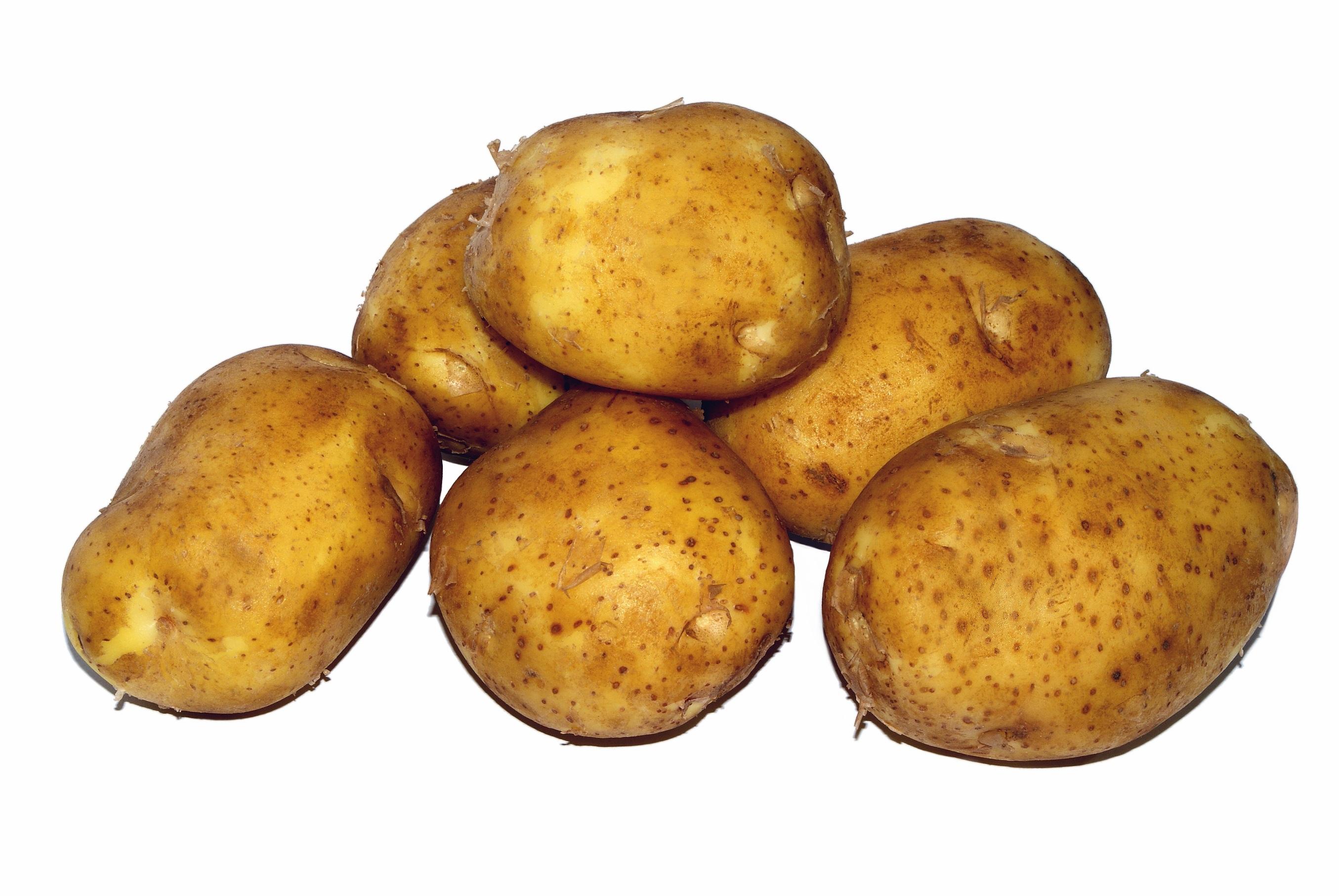 этой овощи картошка картинки как происходит