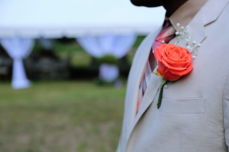 Poze Plantă Femeie Alb Floare Petală Arc Roșu Roz Nuntă