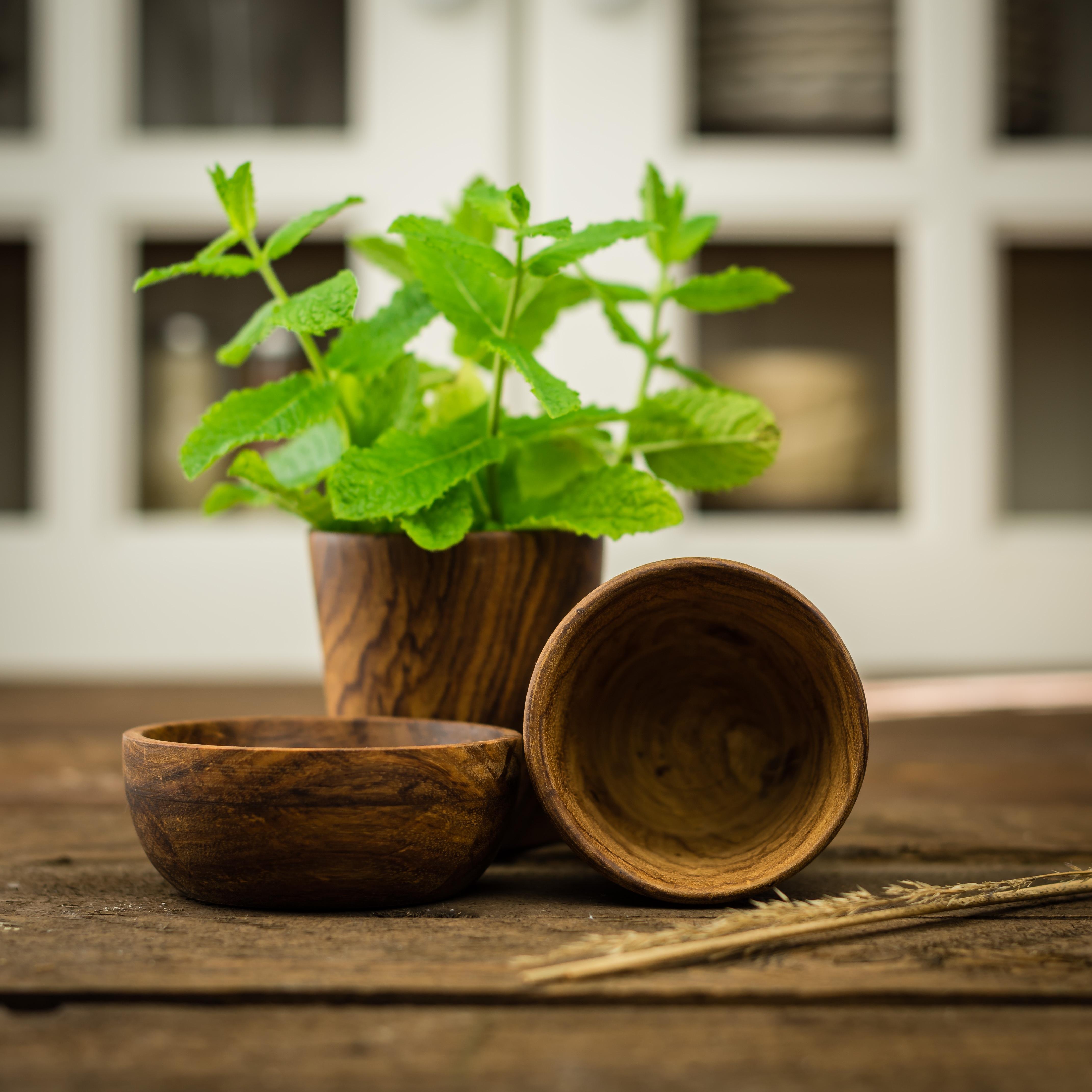 Pot Plante En Bois images gratuites : plante, bois, feuille, verre, plat, vert
