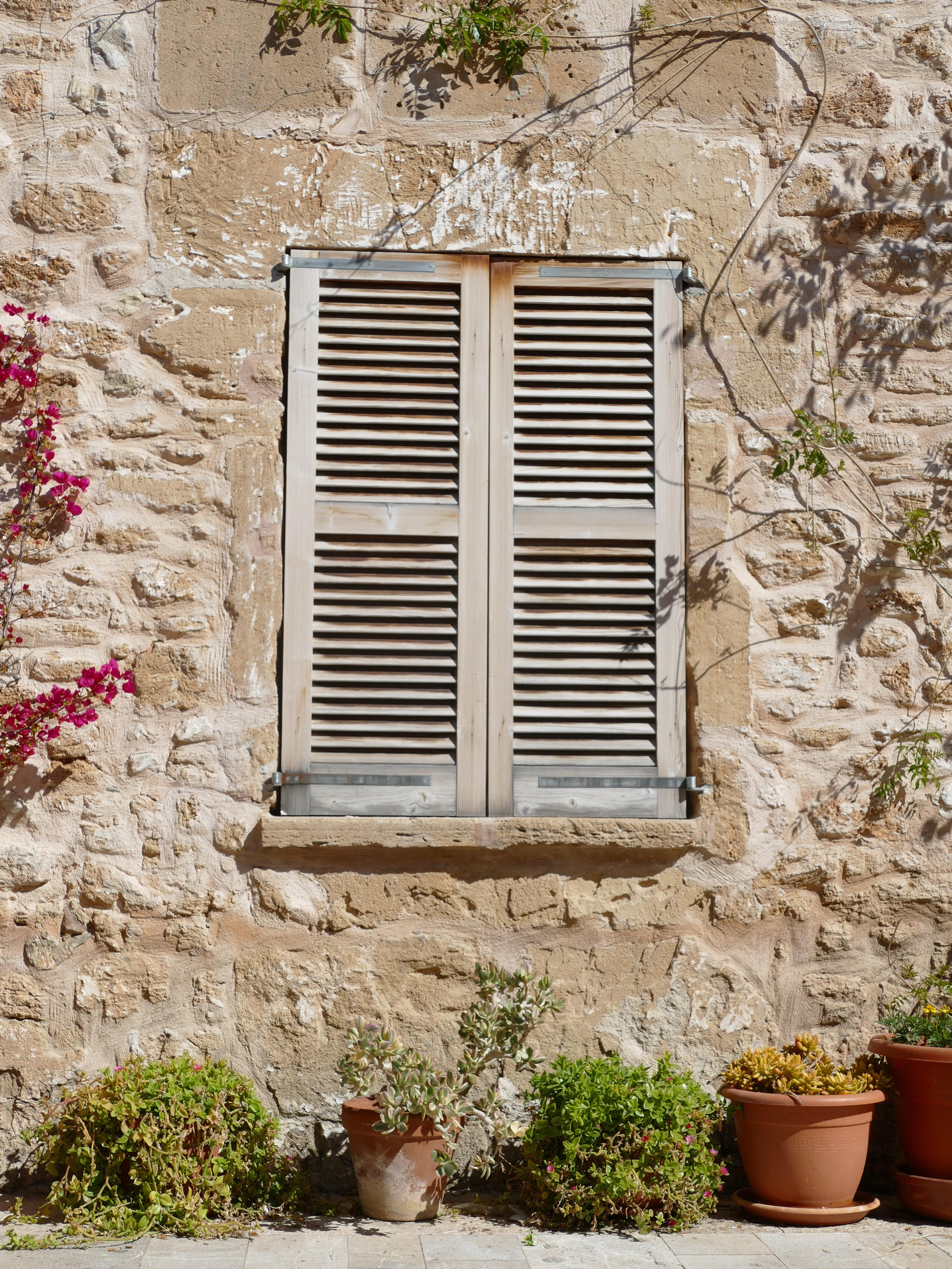 Images Gratuites Plante B Timent Maison Mur Cabanon Rustique