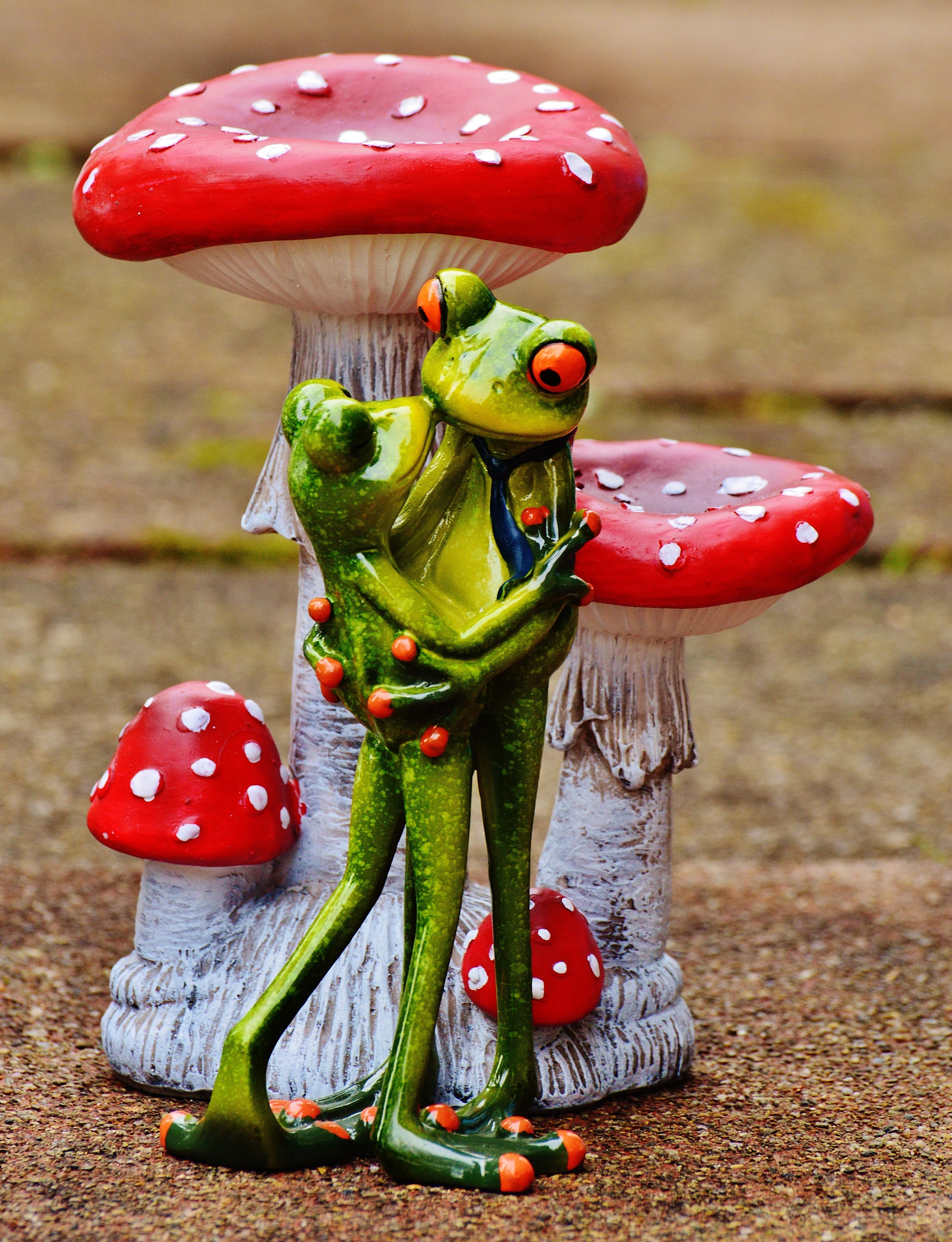 Gambar Imut Cinta Hijau Merah Warna Ciuman Bersama