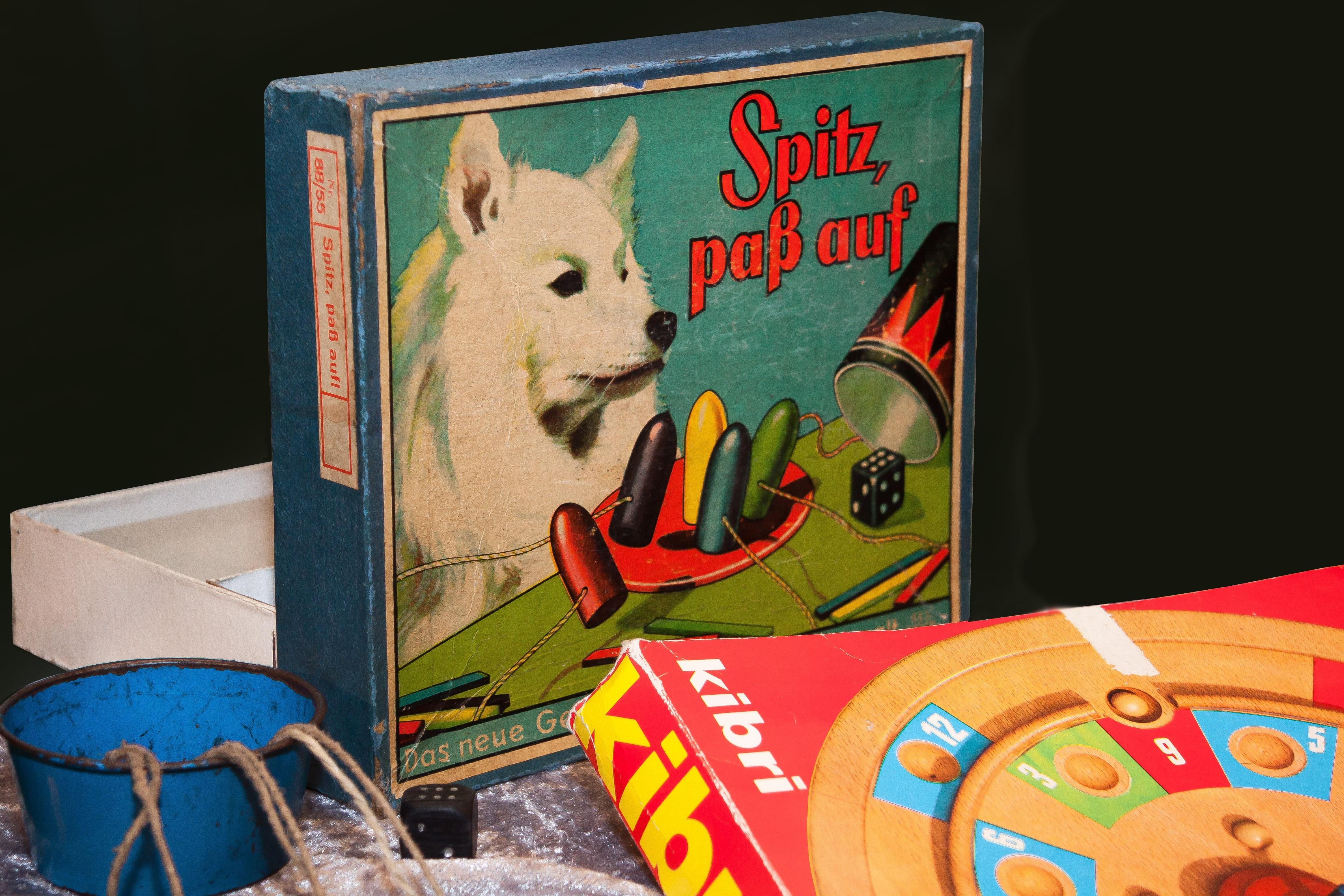 Fotoğraf Oyun Eski Köpek Renk Beceri Boyama Sanat Eğlence