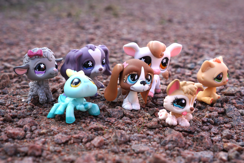 Animaux En Plastique Jouet images gratuites : jouer, plastique, chien, chat, poupée