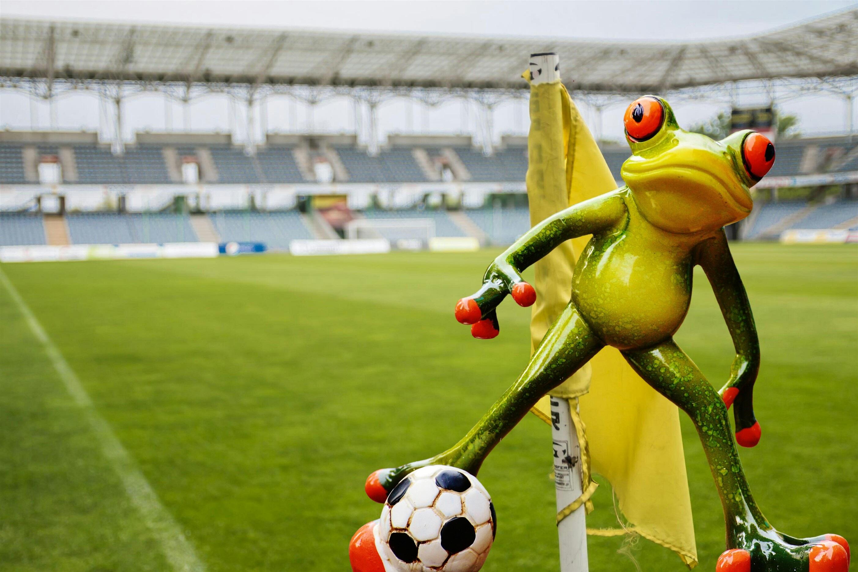 image drole footballeur