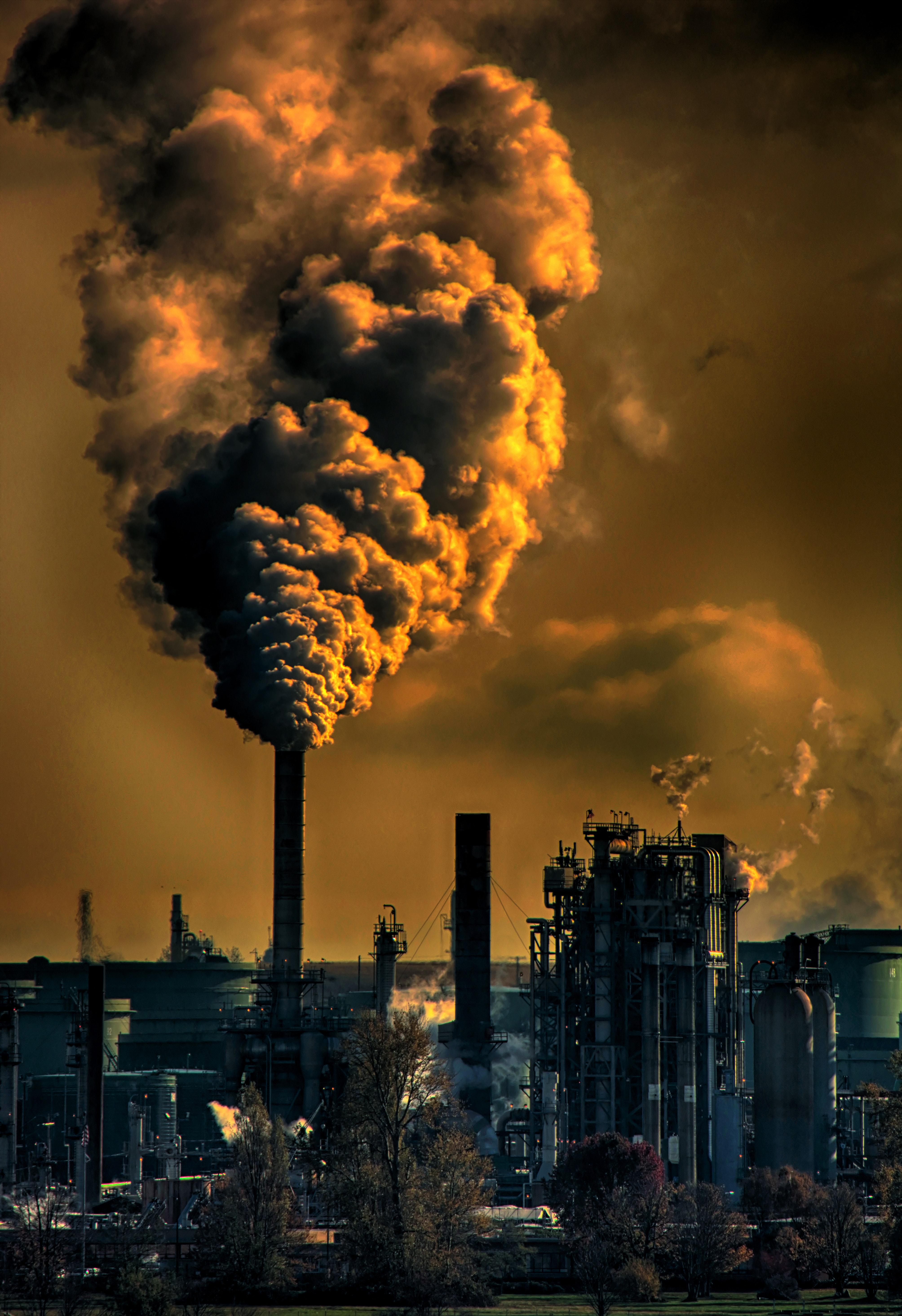 картинки проблемам экологии