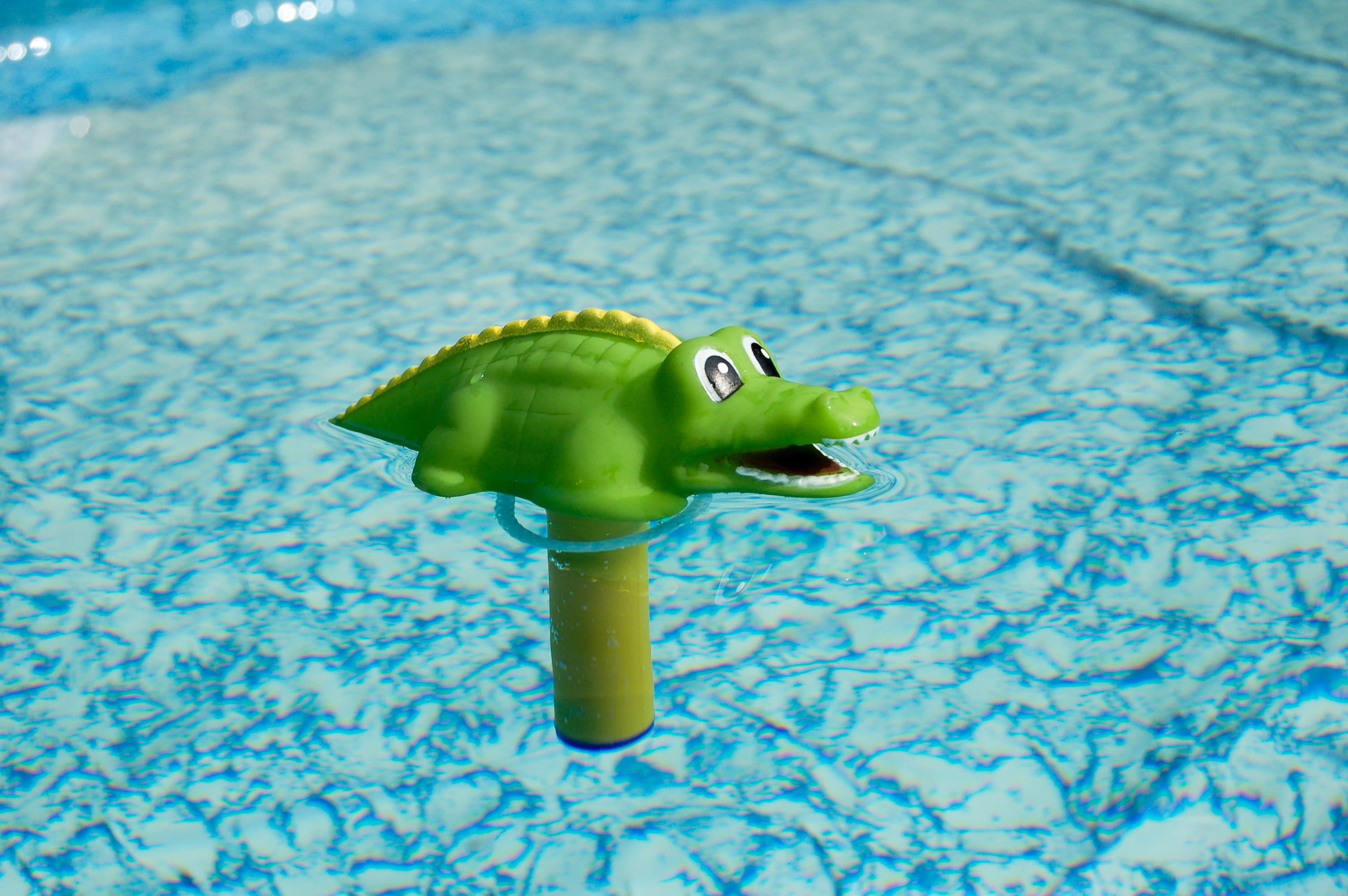 Gambar Hijau Kolam Renang Reptil Mainan Buaya Termometer