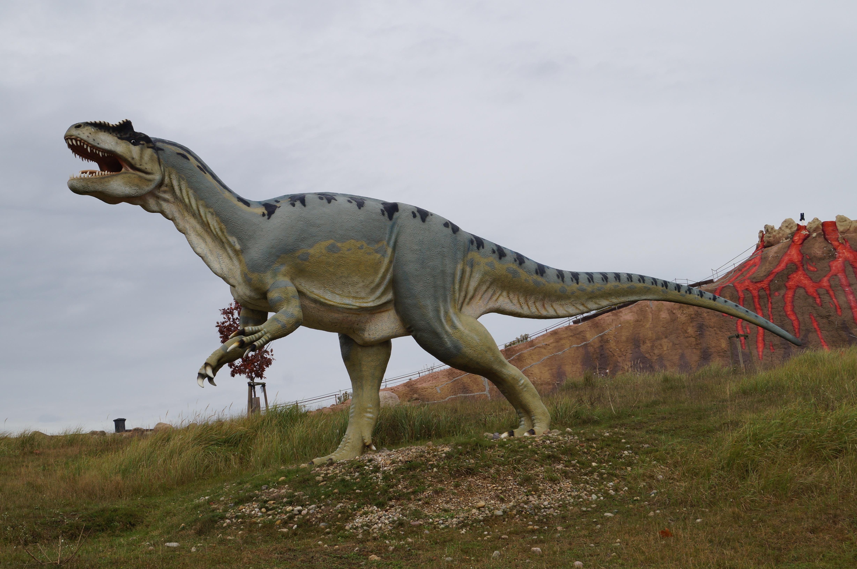 1000+ Gambar Dinosaurus T Rex HD Terbaru