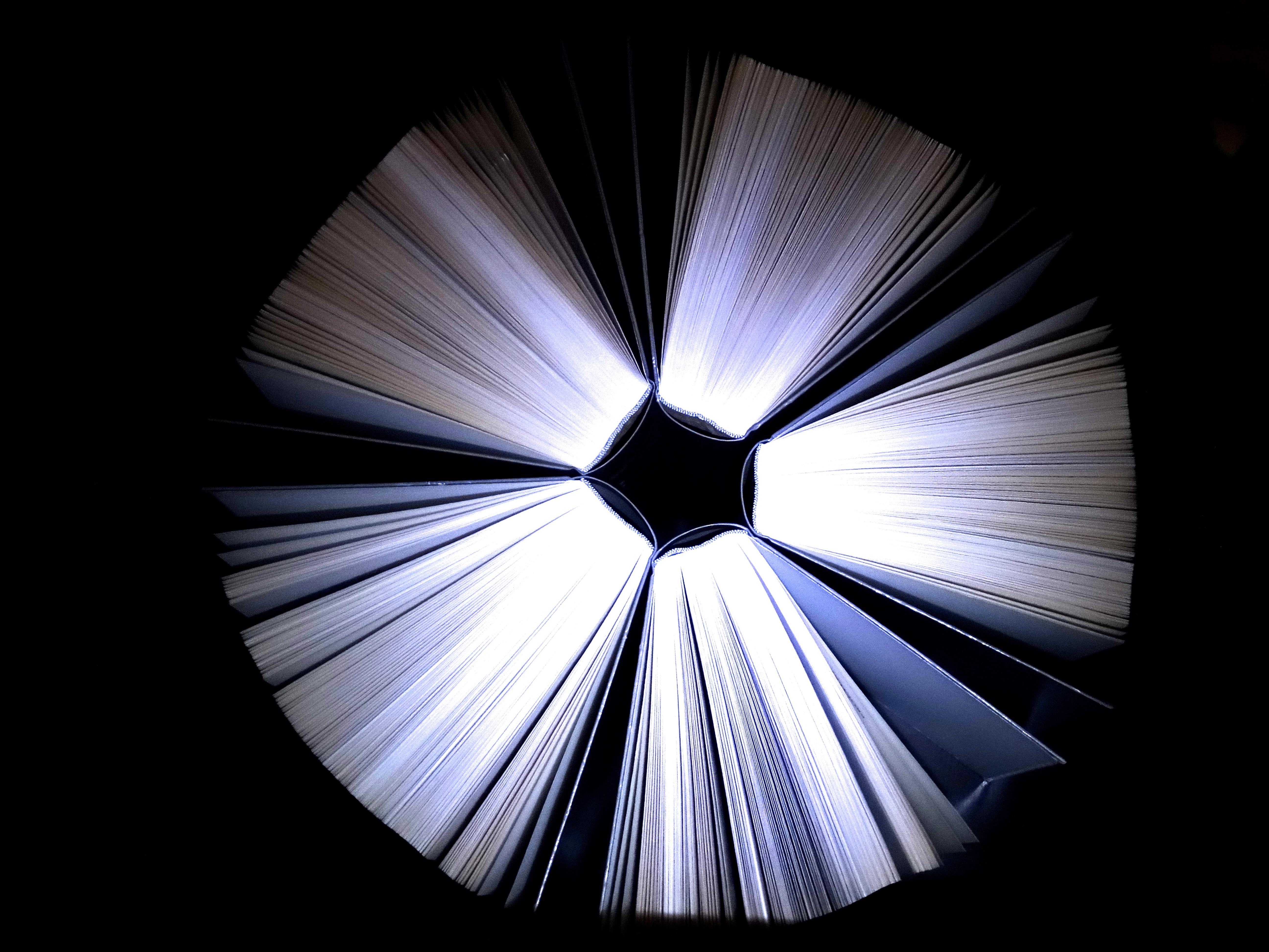 lezen vleugel licht wiel zonlicht lijn kleur duisternis monochroom verlichting cirkel onderwijs literatuur boeken symmetrie boekenworm
