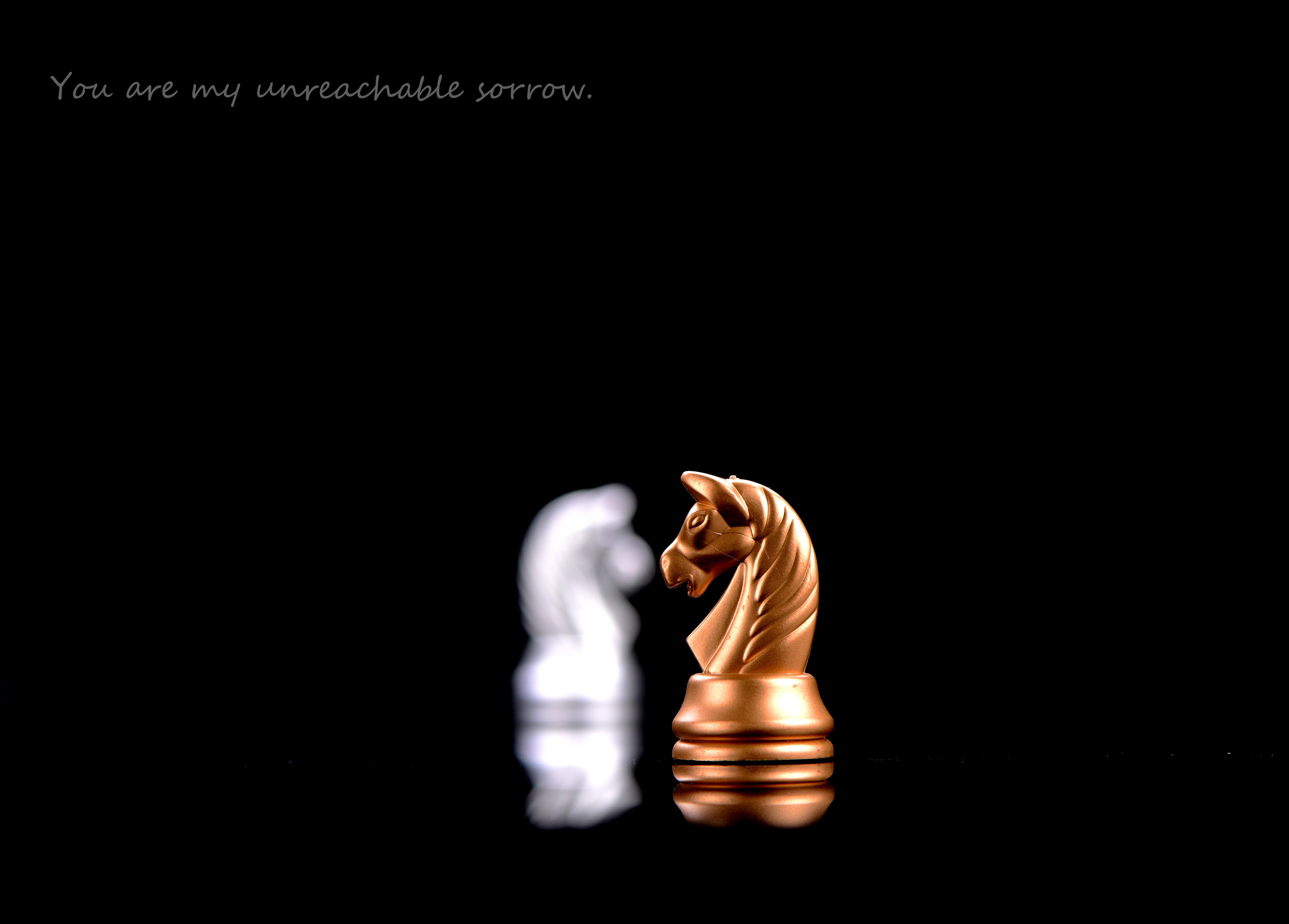 Fotos Gratis Recreacion Amor Oscuridad Juego De Mesa Ajedrez