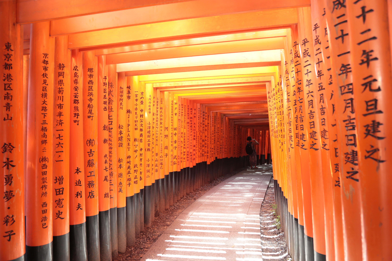 무료 이미지 : 빨간, 색깔, 일본, 인테리어 디자인, 통로, 신사 ...