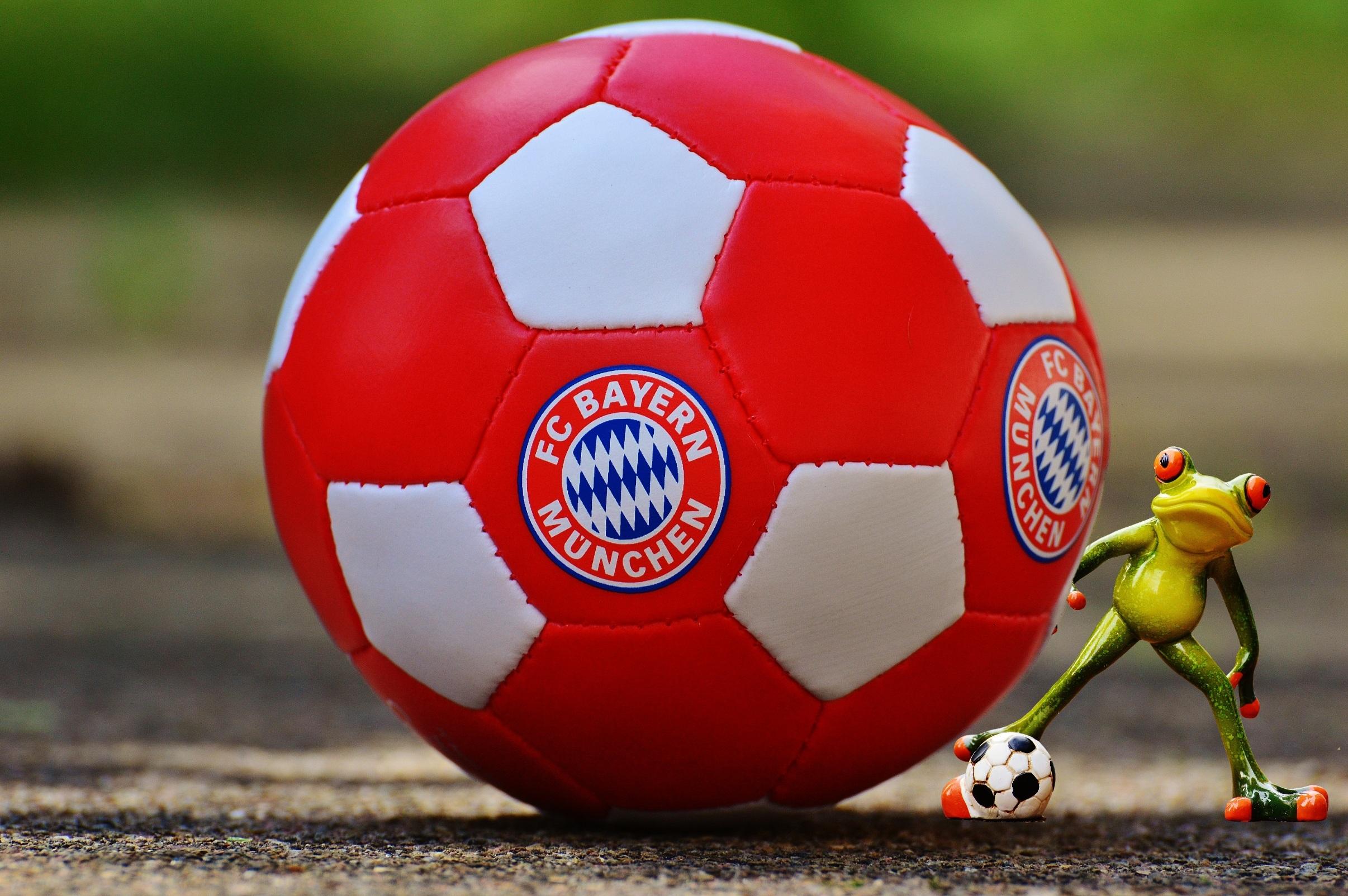 Gambar Merah Sepak Bola Katak Stadion Peralatan Olahraga Lucu Pemain Sepak Bola Arena Allianz Klub Sepak Bola Bavaria Munich Bayern Munich 2412x1604 806029 Galeri Foto Pxhere