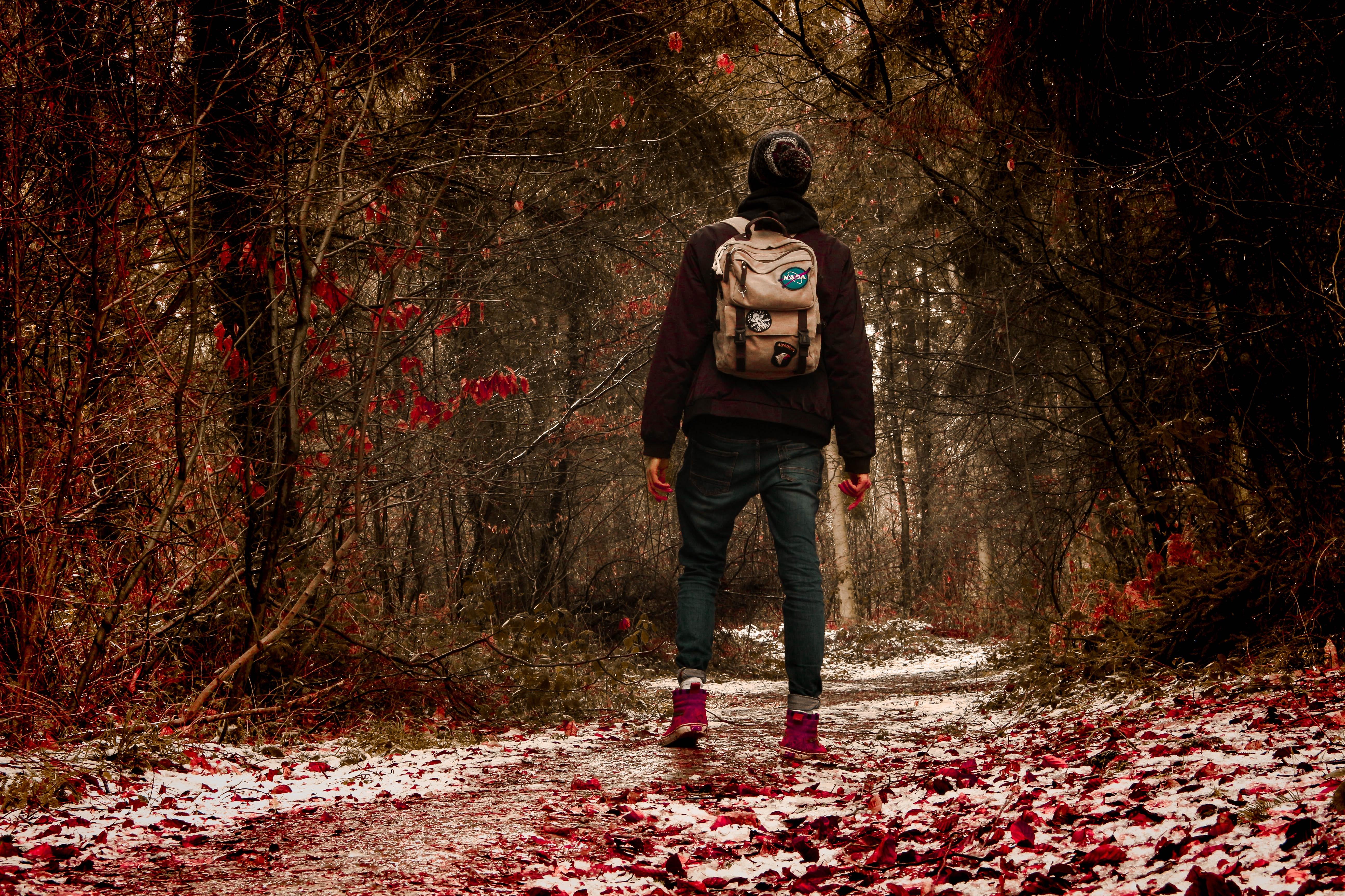 частных перевозчиков мужчина в лесу картинки уже