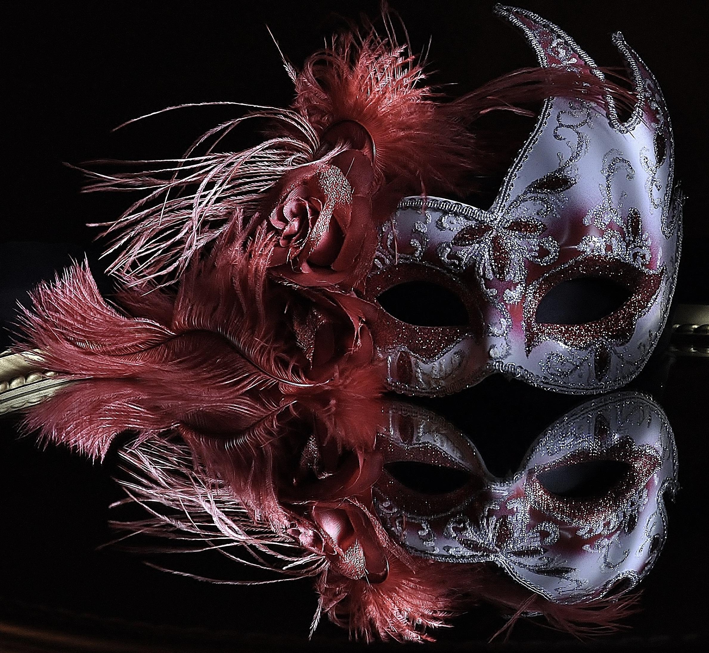 Fotoğraf Yansıma Giyim Kuş Tüyü Hafif Boyama Maske Kostüm